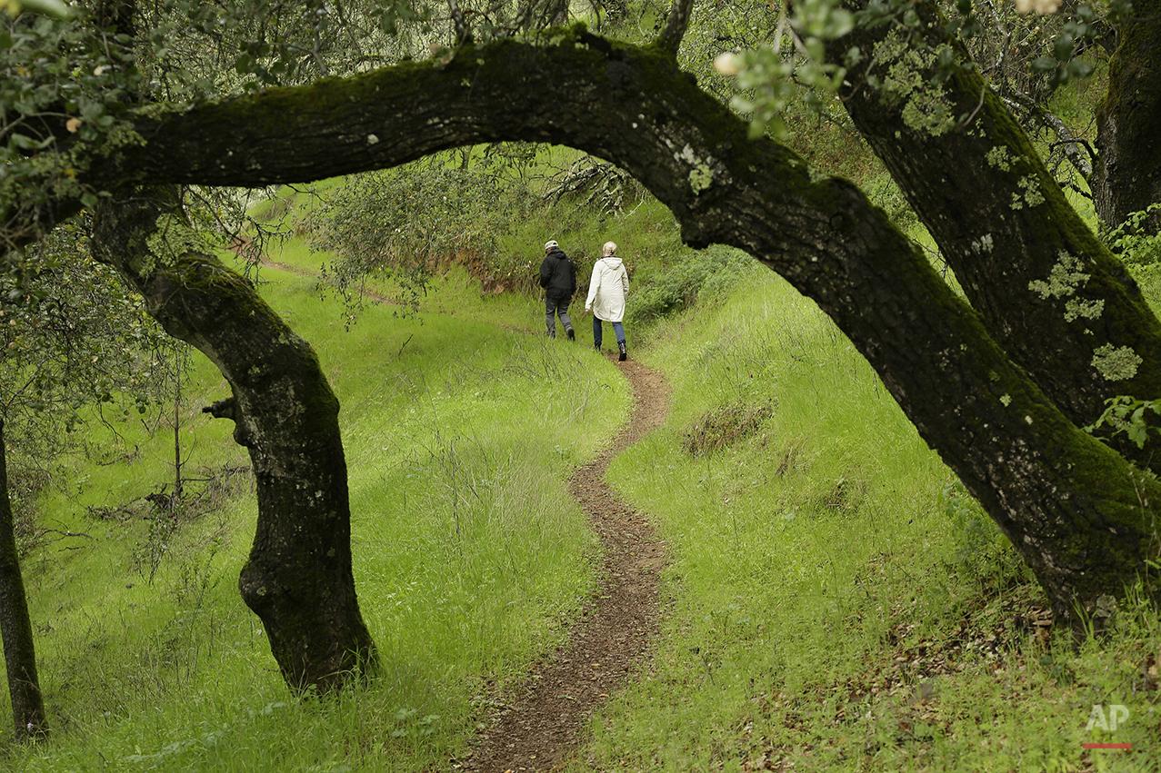 APTOPIX Outdoors Wine Country Hiking