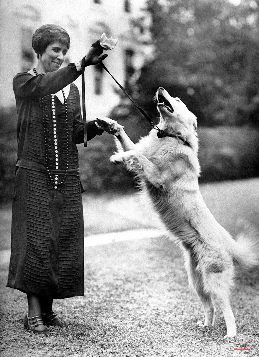 """Mrs. Calvin Coolidge is shown in the South Grounds of the White House with her beautiful, pure white collie """"Rob Roy"""" in Washington on Sept. 27, 1924. (AP Photo)"""