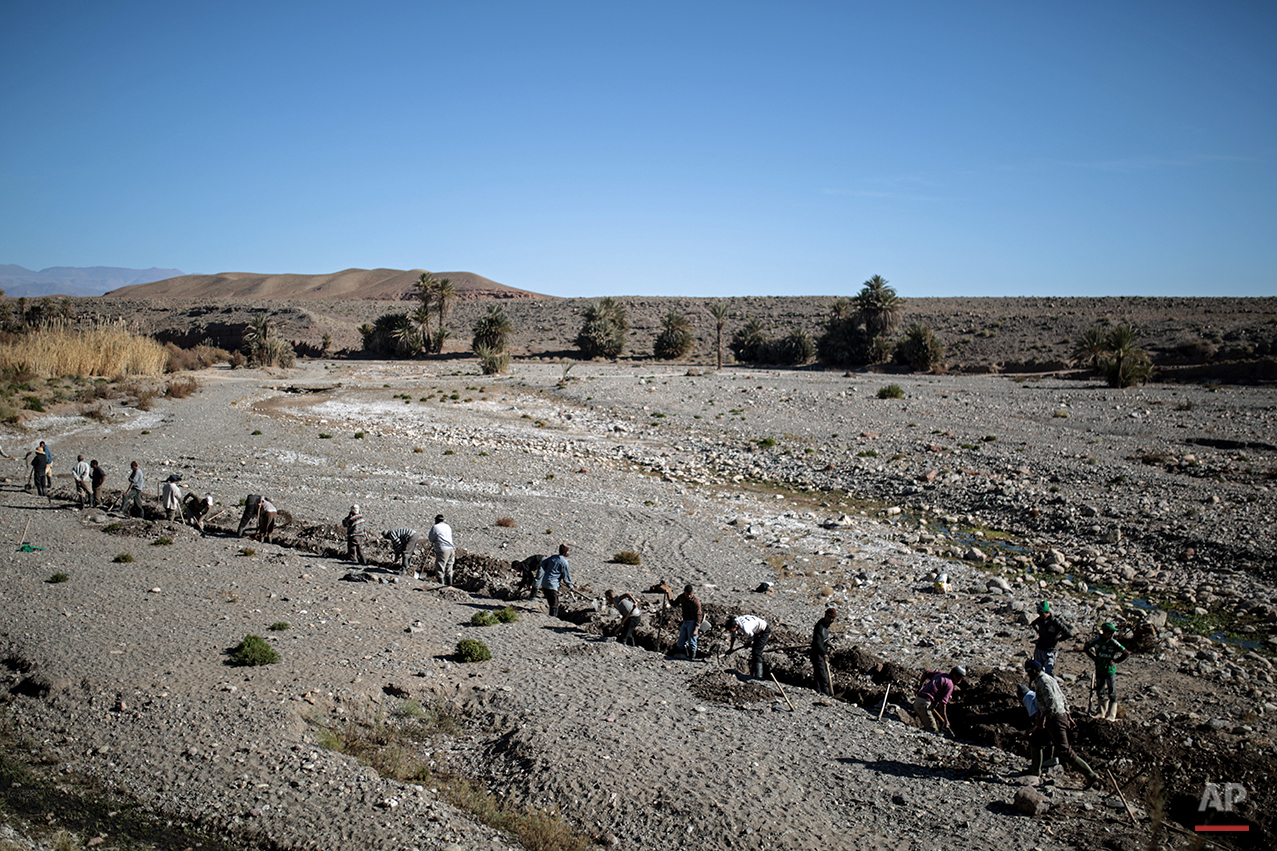 In this Tuesday, Feb. 2, 2016 photo, Amazigh villagers dig a canal in search for underground water to irrigate their crops, in the village of Douar Timneit, next to Ouarzazate, central Morocco. The Amazigh dislike the term Berbers, which stems from Latin and which they find insulting. They are among the many peoples the Romans called Barbarians but they became the stuff of legends, giving the world famous names such as the medieval explorer Ibn Battuta, who travelled further in distance than Marco Polo. (AP Photo/Mosa'ab Elshamy)