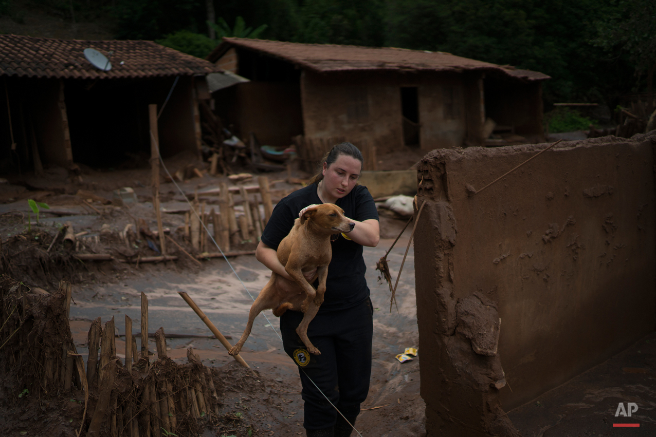 In this Nov. 24, 2015 photo, Danielle Savy, member of the animal protection group Forca Animal, rescues a dog, left behind in Paracatu, Brazil, a community devastated by an early November mudslide, triggered by a dam burst at a nearby mining company. Savy says she has rescued about 15 animals. Many pets were found dead she said because they had been leashed. (AP Photo/Leo Correa)