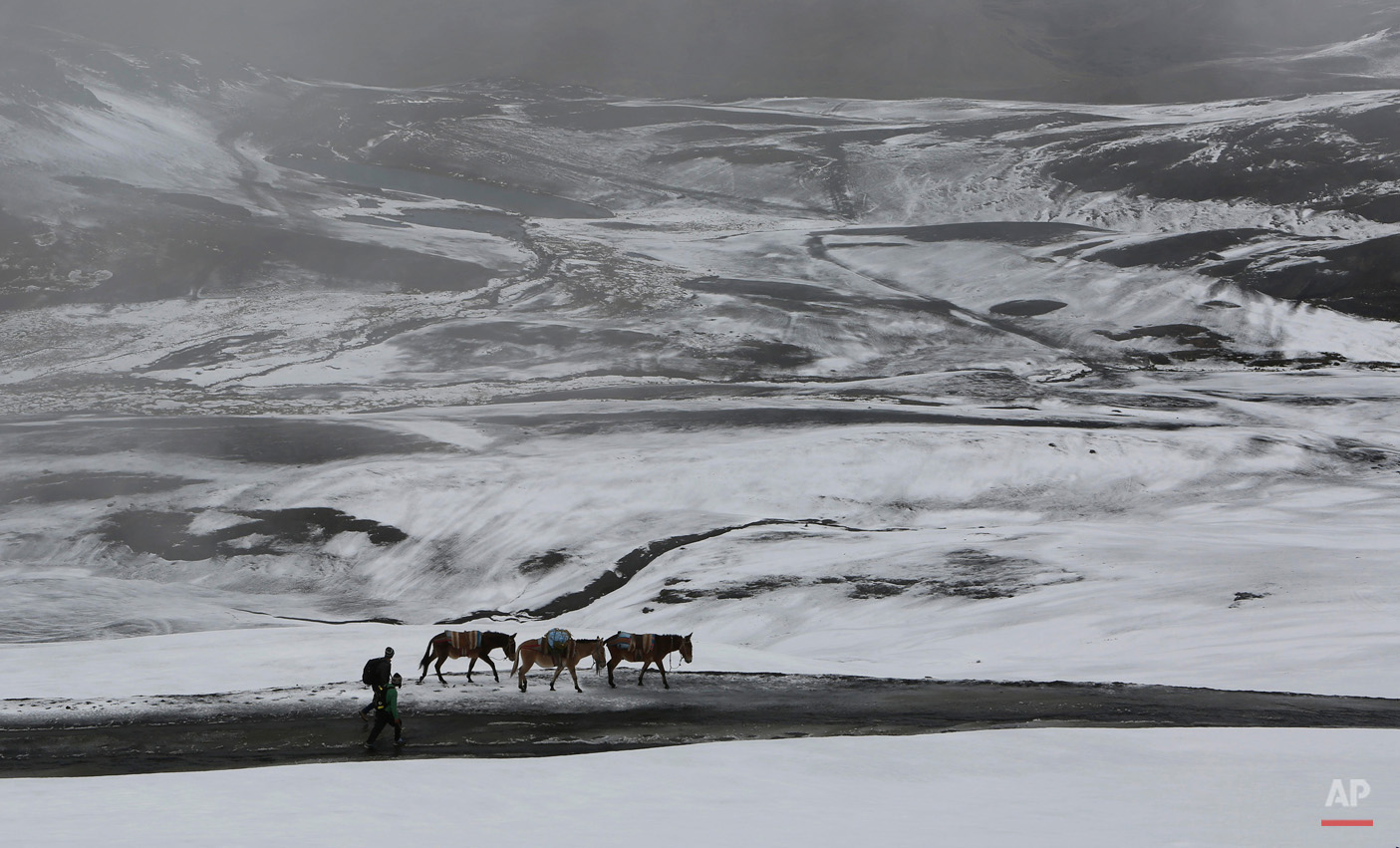 In this March 14, 2015, photo, farmers walk with their donkeys on a snow covered road in La Cumbre mountain on the outskirts of La Paz, Bolivia. (AP Photo/Juan Karita)