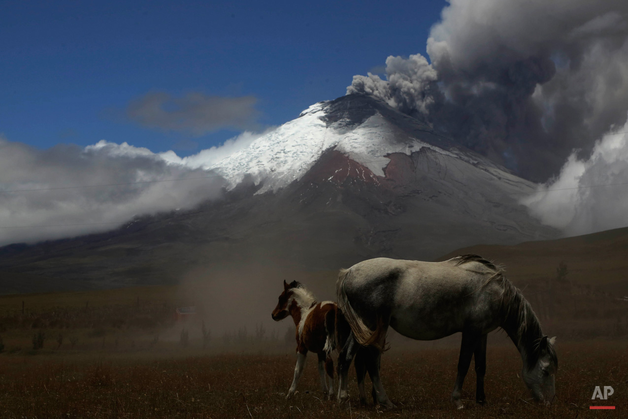 In this Sept. 3, 2015, photo, the Cotopaxi volcano spews ash and vapor, as seen from El Pedregal, Ecuador. Cotopaxi began showing renewed activity in April and its last major eruption was in 1877. (AP Photo/Dolores Ochoa)
