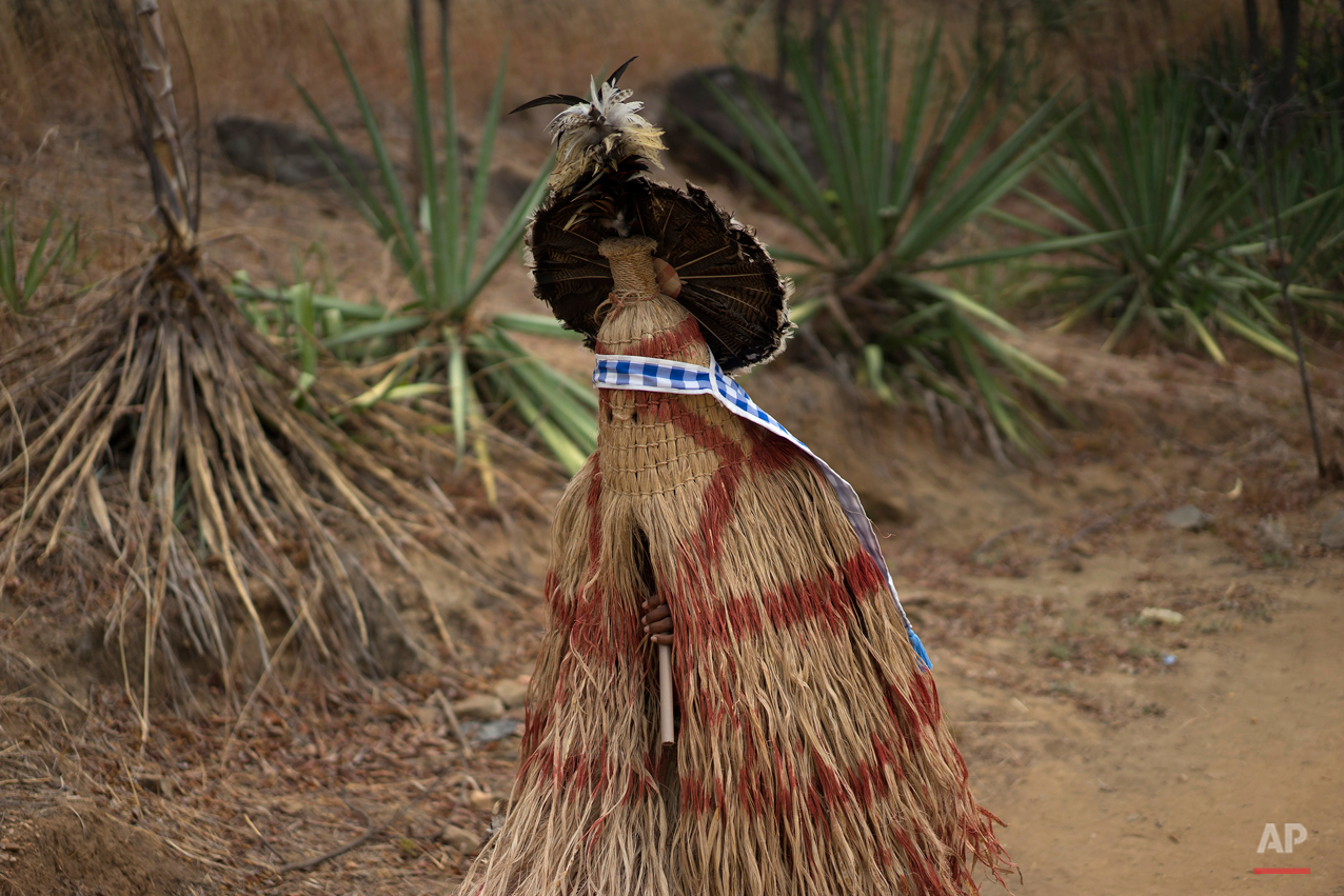 In this Oct. 31, 2015 photo, a member of the indigenous Pankararu tribe wears a ceremonial outfit and plays a flute in Juazeiro do Norte, Brazil. The path he walks is called the Holy Sepulchre, a two kilometer unpaved road that pilgrims use to pay back promises made to Padre Cicero, a figure venerated here as a saint but not recognized as one by the Roman Catholic Church, or to ask for his help. (AP Photo/Leo Correa)