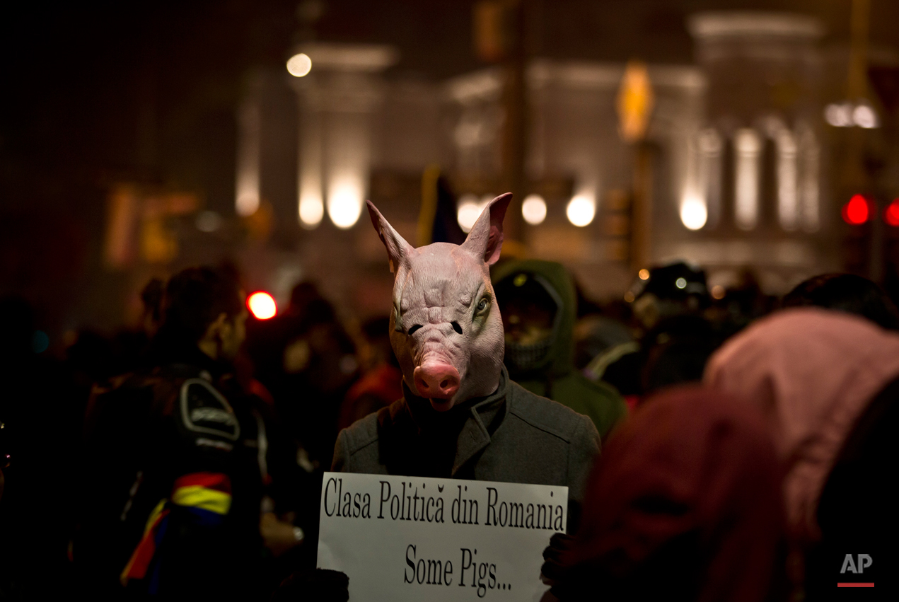 """A man wears a pig mask holding a banner that reads """"The Romanian political class - Some pigs"""" during the fifth day of protests in Bucharest, Romania, Saturday, Nov. 7, 2015, calling for better governance and an end to corruption, in Bucharest, Romania, Nine more people died Saturday, bringing the death toll to 41 victims, a week after the Oct. 30 blaze that erupted at the Colectiv nightclub during a heavy-metal concert. (AP Photo/Vadim Ghirda)"""