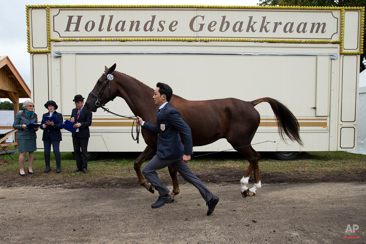Netherlands Eventing Photo Gallery