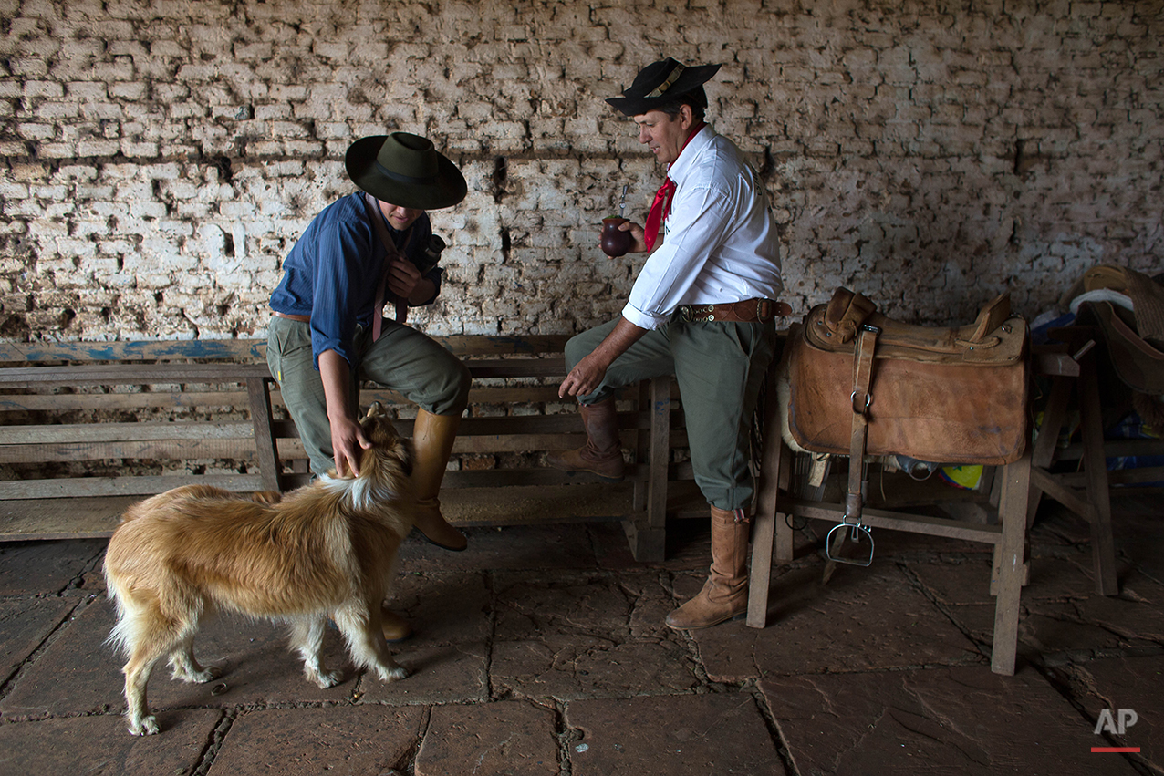 In this Sept. 18, 2015, gauchos Luiz Guilherme de Oliveira, 15, left, and Antonio Carlos Pereira, 45, drink mate in Santa Izabel estancia, Alegrete municipality, Rio Grande do Sul state, Brazil. Mate is a traditional South American infused drink, it is prepared by steeping dried leaves of mate herb in hot water and is served with a metal straw from a shared hollow calabash gourd. The mate, is the omnipresent herbal tea seemingly everyone in the south continually sips on. (AP Photo/Eraldo Peres)