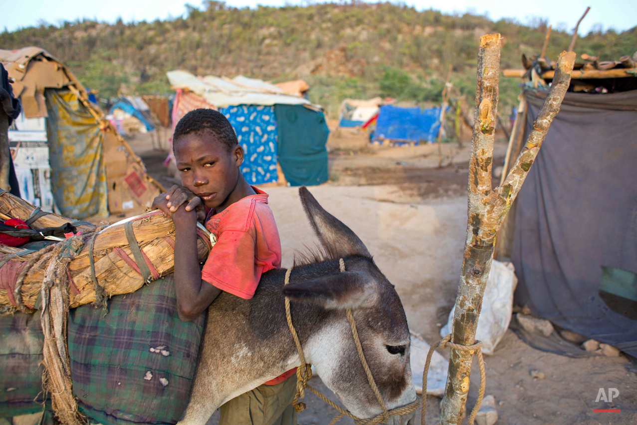 In this Aug. 4, 2015 photo, Dominican-born Haitian Pierre Wiltiman rests on his father's donkey in an encampment set up by displaced Haitians in Anse-a-Pitres, Haiti, after fleeing the D.R. after getting death threats from locals. Wiltiman, 10, has no birth certificate and his father spent most of his working life in the D.R. as a field hand. (AP Photo/Dieu Nalio Chery)