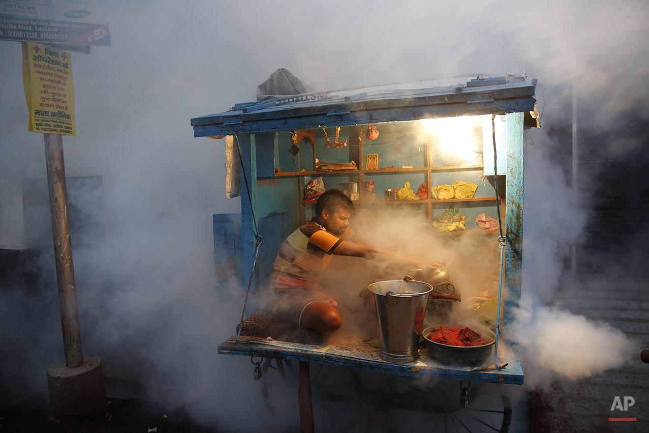 APTOPIX India Dengue Mosquitoes