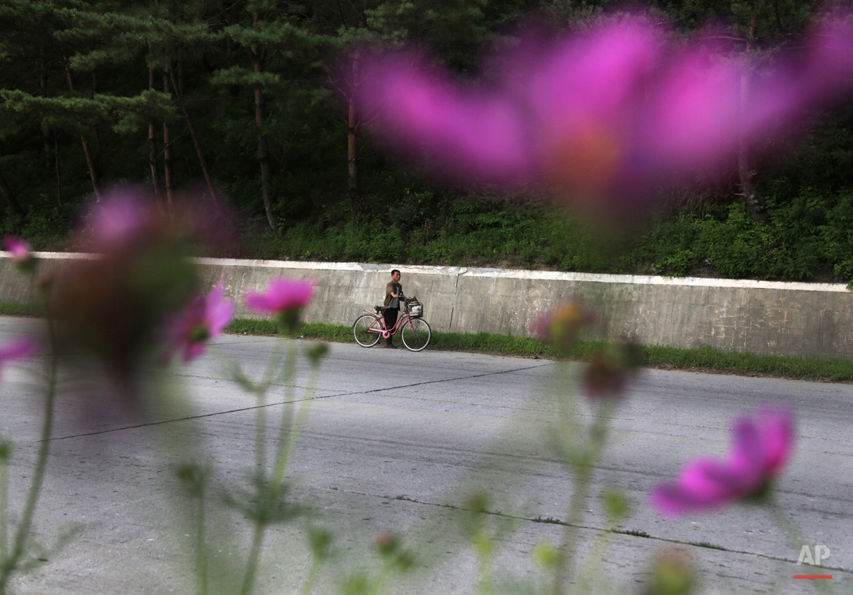 A man pushes his bicycle on a road leading to Wonsan, North Korea, Monday, Aug. 17, 2015. The port city on the country's east coast is a popular destination for foreign and local vacationers. (AP Photo/Dita Alangkara)
