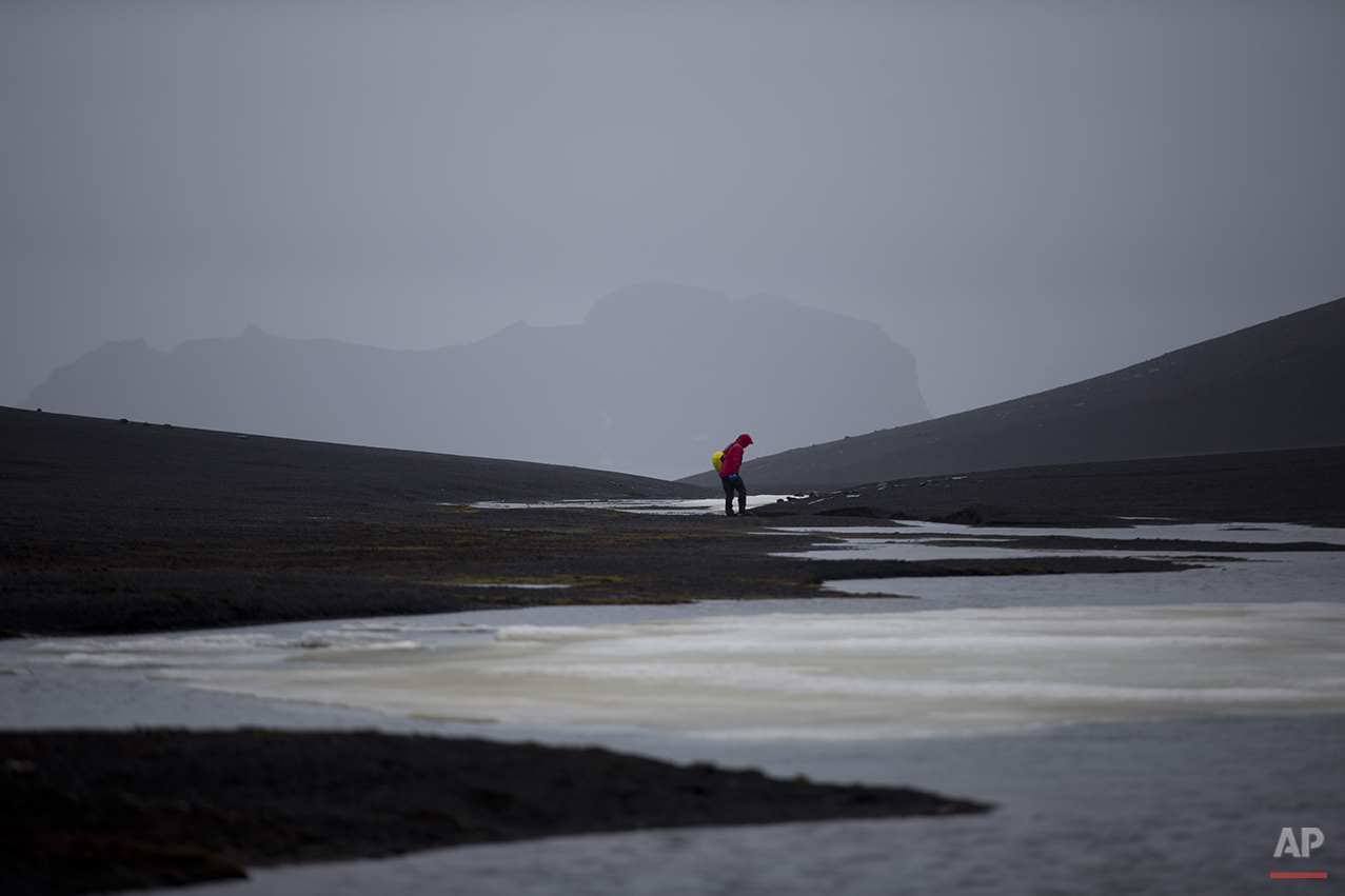 """In this Jan. 24, 2015 photo, an international scientist collects samples in Deception Island, in the South Shetland Islands archipelago Antarctica. Parts of Antarctica are melting so rapidly it has become """"ground zero of global climate change without a doubt,"""" said Harvard geophysicist Jerry Mitrovica. (AP Photo/Natacha Pisarenko)"""