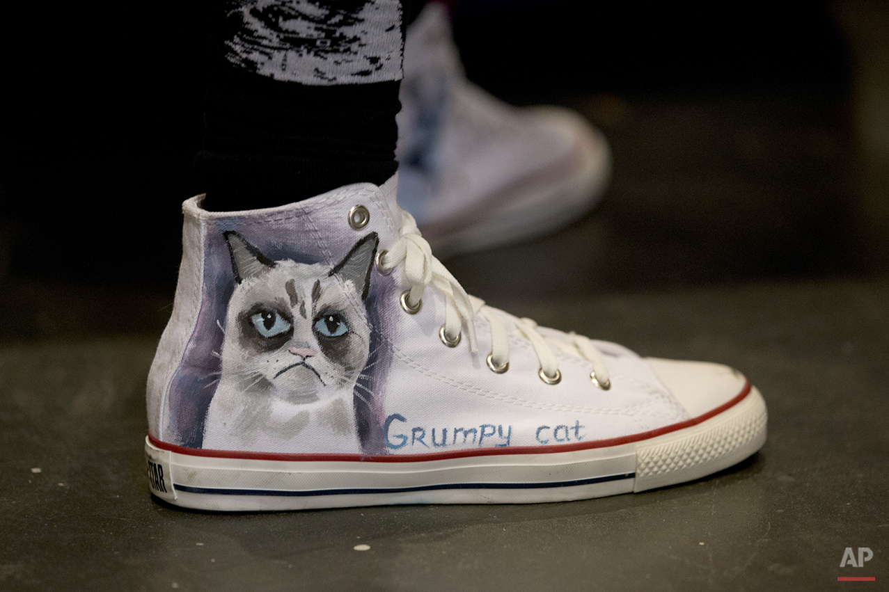 Pets CatCon
