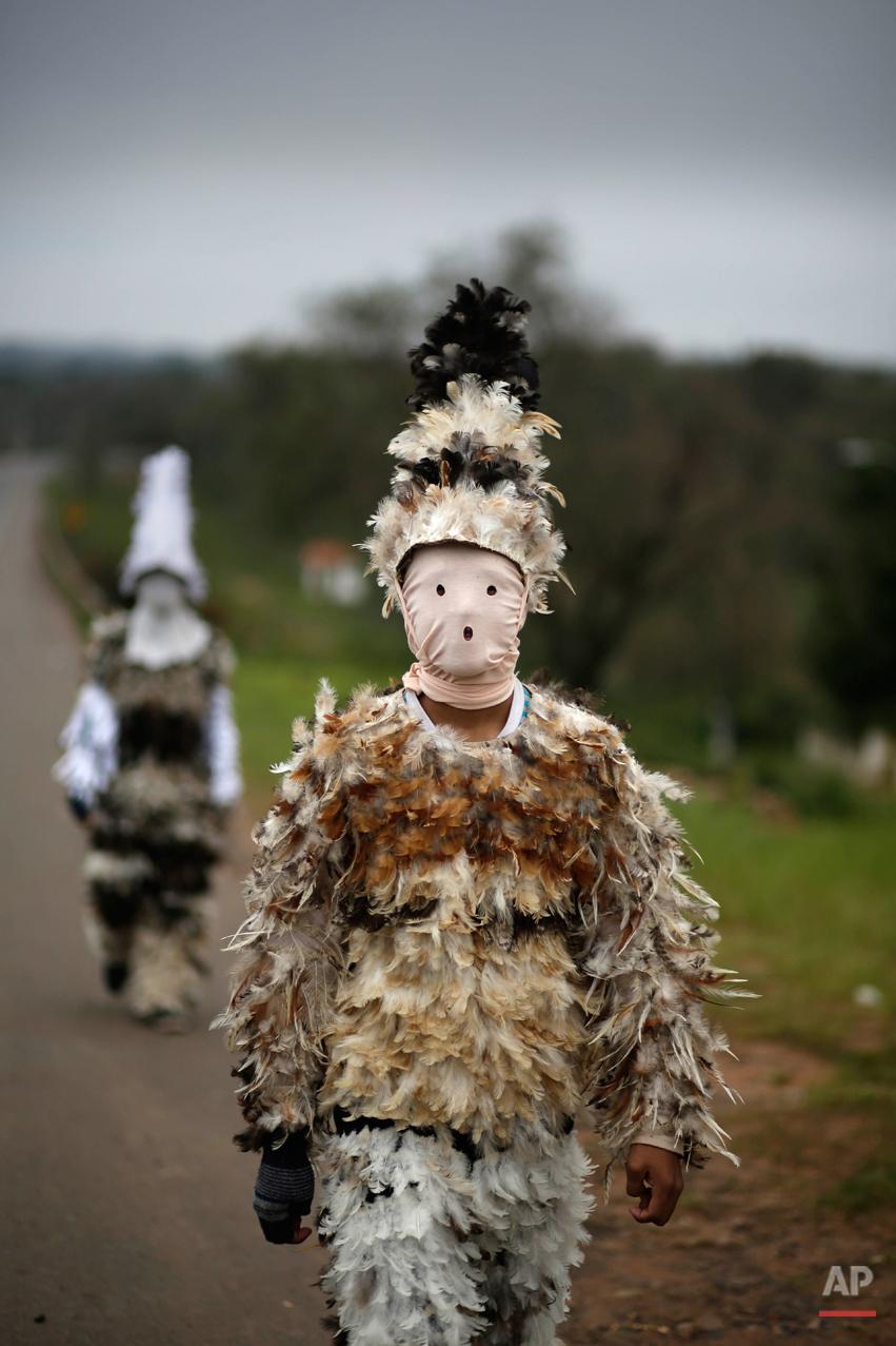 APTOPIX Paraguay Feather Festival Photo Gallery