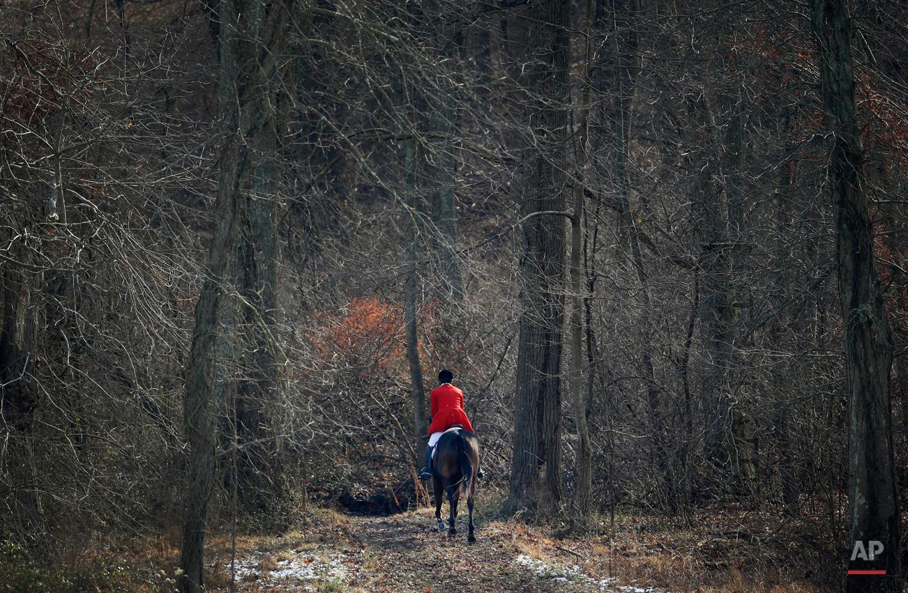 US Fox Hunting Photo Essay