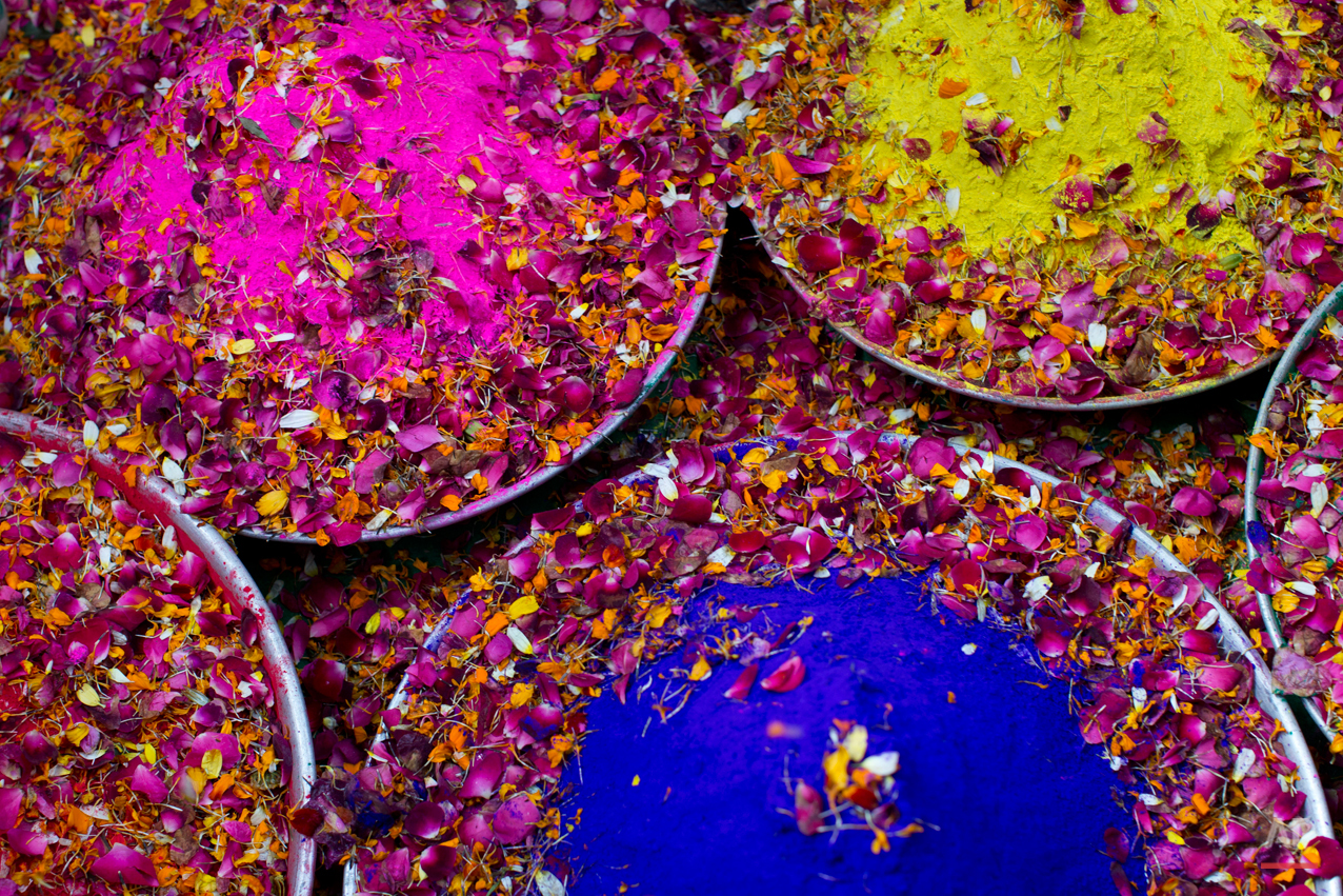 In this Tuesday, March 3, 2015 photo, trays filled with colored powder and flower petals lie on a floor to be used by widows to celebrate Holi, the Hindu festival of colors, at the Meera Sahabhagini Widow Ashram in Vrindavan, India. After their husband's deaths many of the women in the ashrams have been banished by their families, for supposedly bringing bad luck, while some move voluntarily to and around the town where devotees believe Lord Krishna was born. (AP Photo/Bernat Armangue)