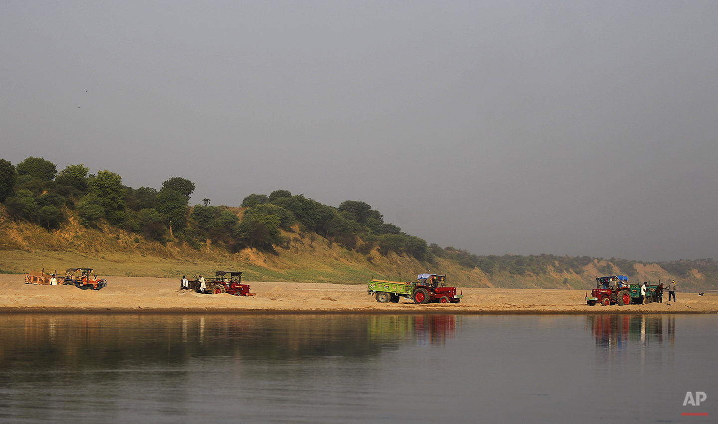 In this photo taken Tuesday, April 29, 2014, laborers load sand onto tractor trolleys on the banks of the Chambal River near Bhopepura village in the northern Indian state of Uttar Pradesh. The most immediate worry to this narrow 250-mile stretch of the Chambal sanctuary is illegal sand mining, which can strip away thousands of tons of riverbank on a single day, causing immense amounts of silt to spill into the river, upsetting its delicate ecology. Dozens of tractors regularly snake down a dirt road to the river, pulling trailers filled with wiry, shovel-wielding men who can earn $15 for a long, exhausting day of work. (AP Photo/Altaf Qadri)