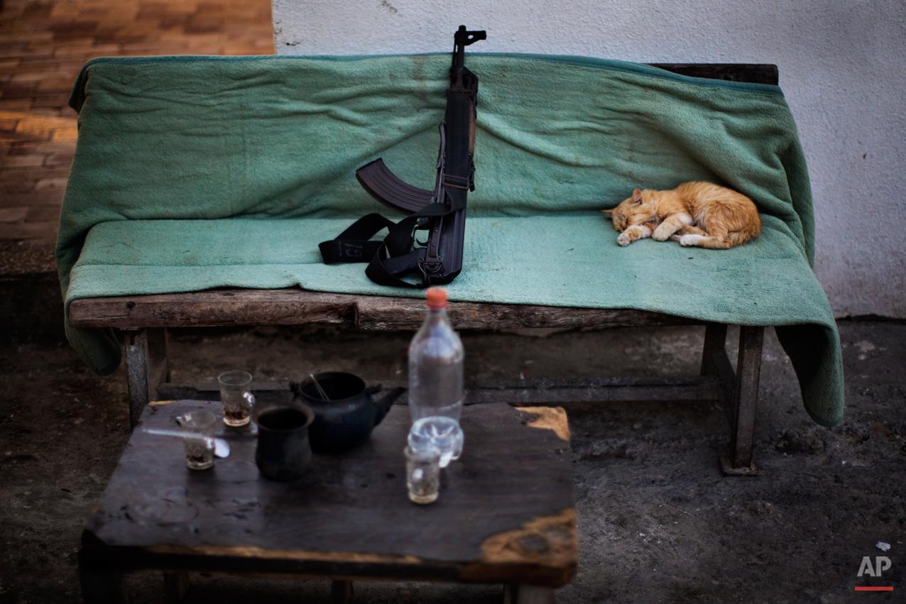A cat sleeps next a Kalashnikov weapon  on a Hamas security check point in Gaza City, Tuesday, Oct. 30, 2012. (AP Photo/Bernat Armangue)