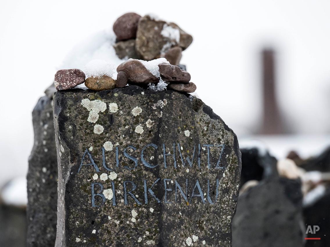 Germany Auschwitz Anniversary