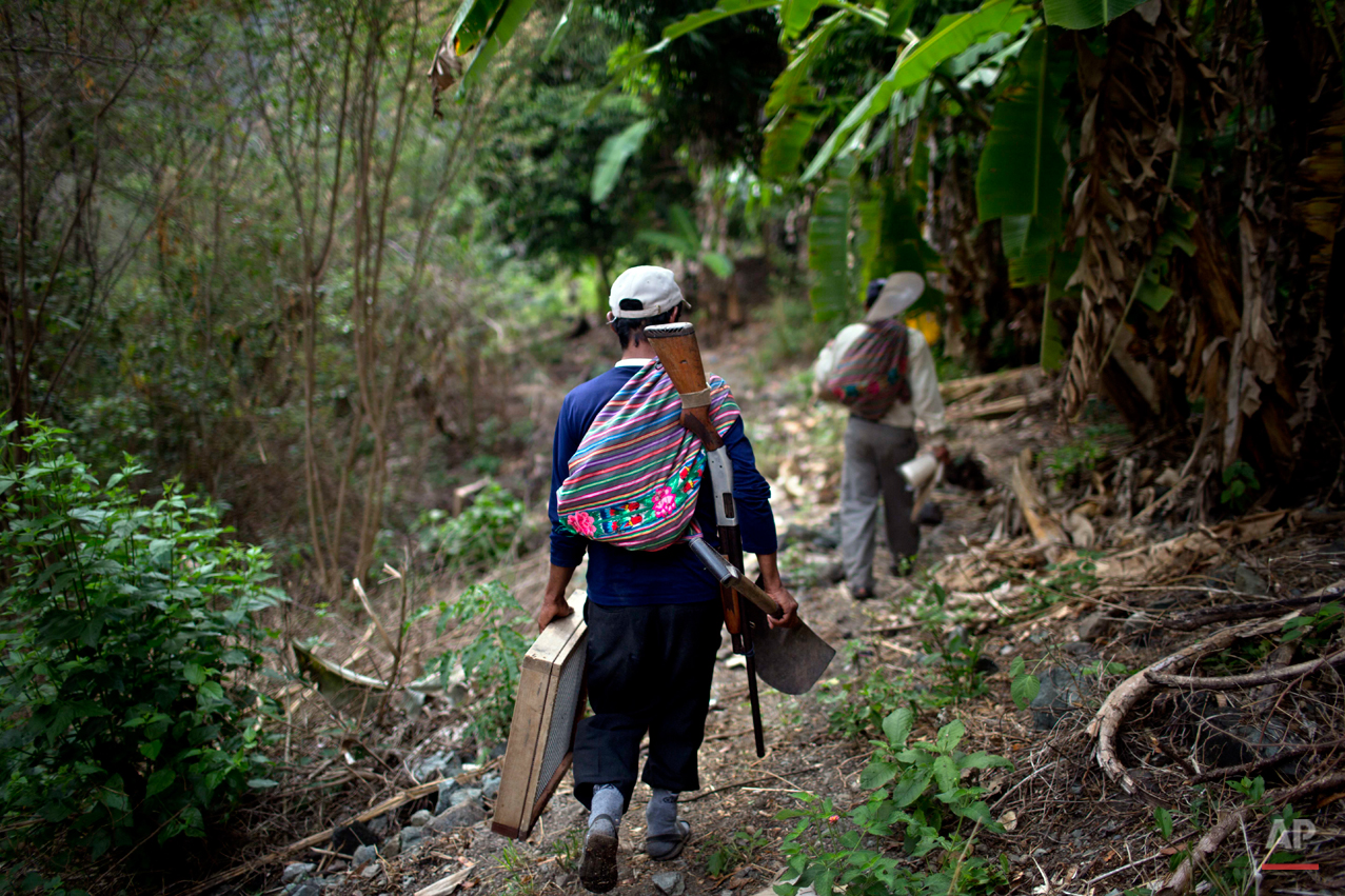 In this Sept. 4, 2014 photo, Belen Chapi Civil Defense Committee members help transport forensic anthropological equipment, as they journey to the Paccha village of Peru, to help forensic investigators find the common graves of  of those killed in a 1984 massacre. Arriving is not easy. This rugged southeastern region known as ìOreja de Perro,î or Dogís Ear, lacks telephones and good roads.(AP Photo/Rodrigo Abd)