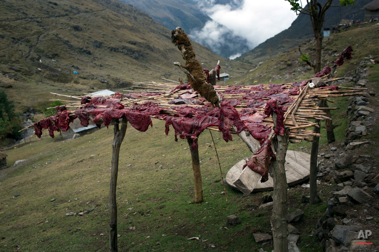 In this Sept. 3, 2014 photo, beef dries on a wooden rack in the Chupon village of Peru. This isolated corner of Peru is witnessing exhumations of mass gives with victims of the 1980-2000 internal conflict, which claimed an estimated 70,000 lives. Since 2003, the remains of slightly more than 2,400 victims have been recovered, but the bodies of an estimated 12,000 more, mostly poor, Quechua-speaking farmers, are believed to remain unearthed.  (AP Photo/Rodrigo Abd)