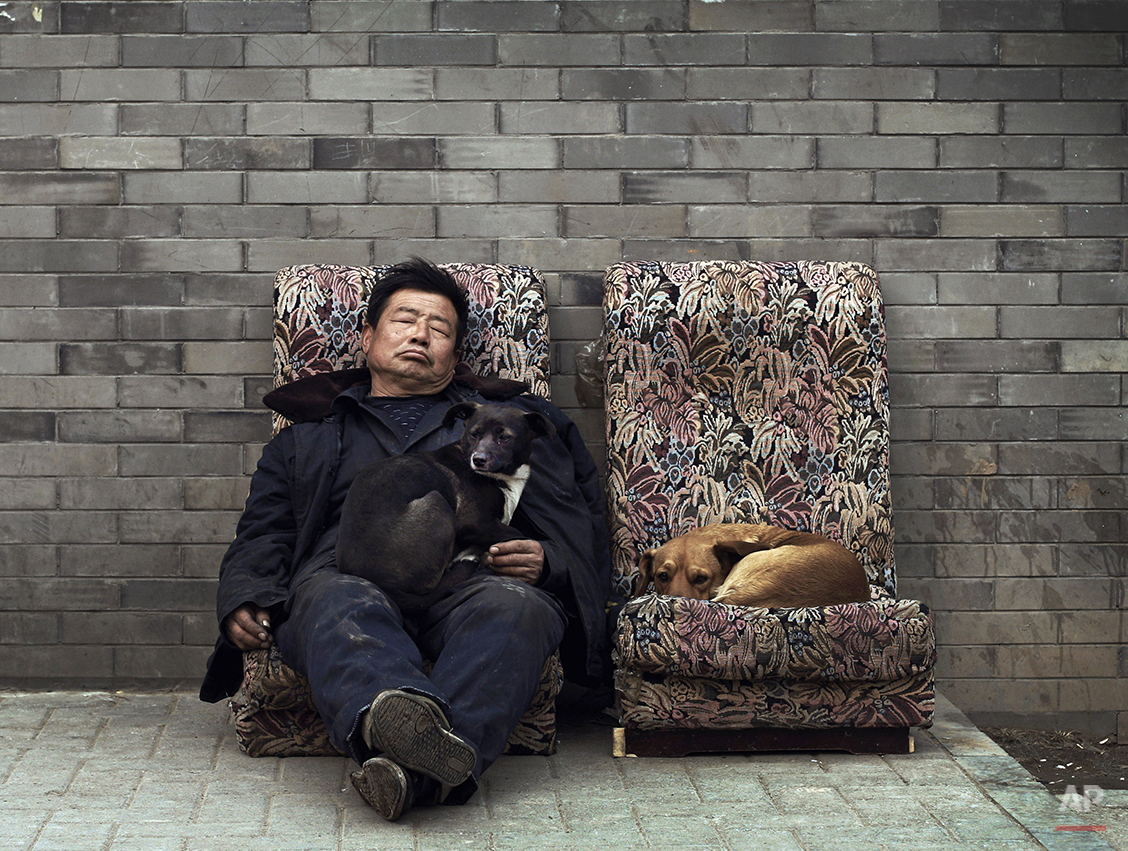 Stray dogs take rest together with a man on the broken sofas placed near a hutong in Beijing Wednesday, Feb. 23, 2011.  (AP Photo/Andy Wong)
