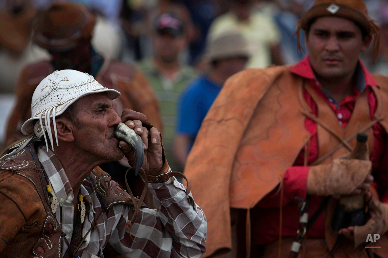 """In this July 24, 2015 photo, a cowboy sips """"cachaÁa"""" from a bull horn during the annual Catch the Bull competition known as """"Pega do Boi"""" in Serrita, in Brazil's Pernambuco state. The drink is a distilled spirt made from sugarcane juice and is shared among riders throughout the day. (AP Photo/Eraldo Peres)"""
