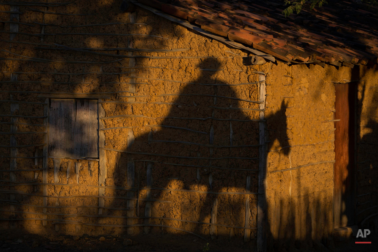 """In this July 24, 2015 photo, a cowboy's shadow is cast on a traditional adobe home as the sun sets in Serrita, in Brazil's Pernambuco state, after the annual Catch the Bull competition known as """"Pega do Boi.""""  Brazilian cowboys, known as """"vaqueiros,"""" are traditionally from this northeastern region, and emerged from the integration of white colonizers with native Brazilian indigenous communities around the 15th century, when cattle and horses were introduced to Brazil. (AP Photo/Eraldo Peres)"""
