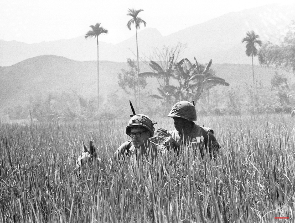 U.S. Marines and their scout dog, its ears barely visible in the high grass, search for Viet Cong in battle zone 20 miles Southwest of Da Nang, Vietnam, Feb. 5, 1967. They were from the 2nd battalion of the 4th Marine division on operation independence. (AP Photo)
