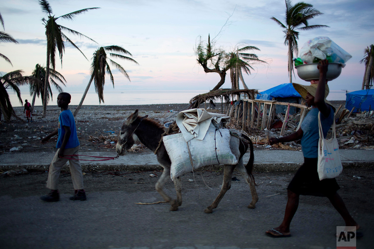 In this Nov. 1, 2016 photo, residents walk alongside their donkey to a street market, past a landscape destroyed by Hurricane Matthew, in Coteaux, Haiti. Throughout the disaster zone, health clinics and hospitals have been badly damaged and medicine is in short supply. (AP Photo/Dieu Nalio Chery)