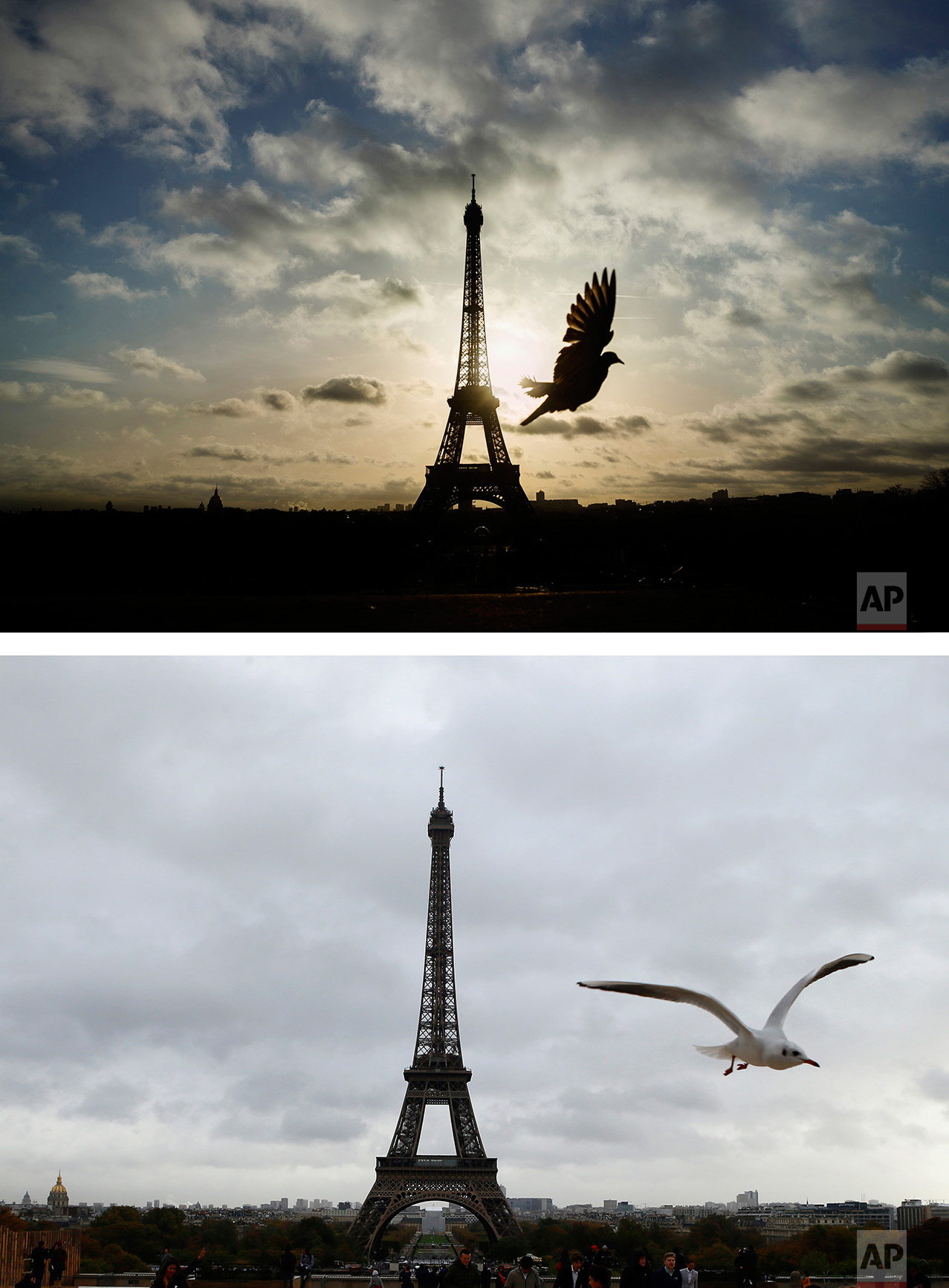 This combination of two photos shows a Sunday, Nov. 15, 2015 photo of a bird in front of the Eiffel Tower, which remained closed on the first of three days of national mourning, in Paris, and a bird in front of the Eiffel Tower, bottom, on Wednesday Nov. 9, 2016. (AP Photo/Daniel Ochoa de Olza,Francois Mori)