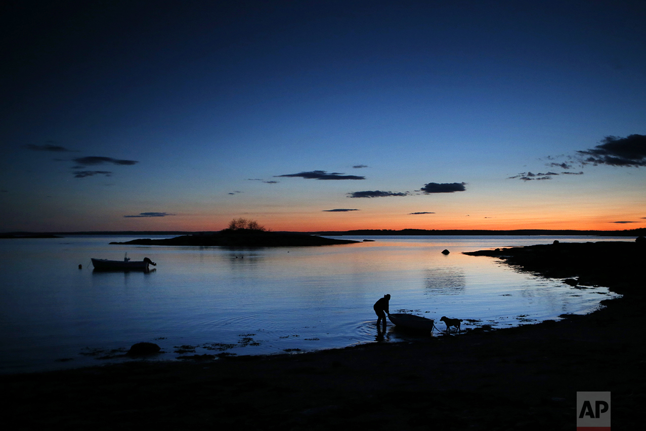 "In the evening twilight, Diane Cowan, a marine biologist who has been studying lobster behavior and ecology for 30 years, ties up her skiff on the shoreline of Friendship Long Island, Maine, on May 10, 2016. Her life on the island is often dictated by the changing tides - and now, she says, by climate change. Her research has produced data on post-larval and juvenile lobsters that is crucial to understanding the future abundance of lobsters in the state. ""I am definitely bearing witness to climate change… For the first 18 years I could predict at least the seasons I had a strong seasonal cycle… And then all of a sudden that was gone because a rapid rise in sea level that change things overnight. And that was like a jolt to me. I should've known. I mean, I read about climate change, I knew the sea level was rising. But until I saw it, until it impacted me directly, I didn't feel it the same way, I didn't understand what it would do,"" said Cowan. (AP Photo/Robert F. Bukaty)"