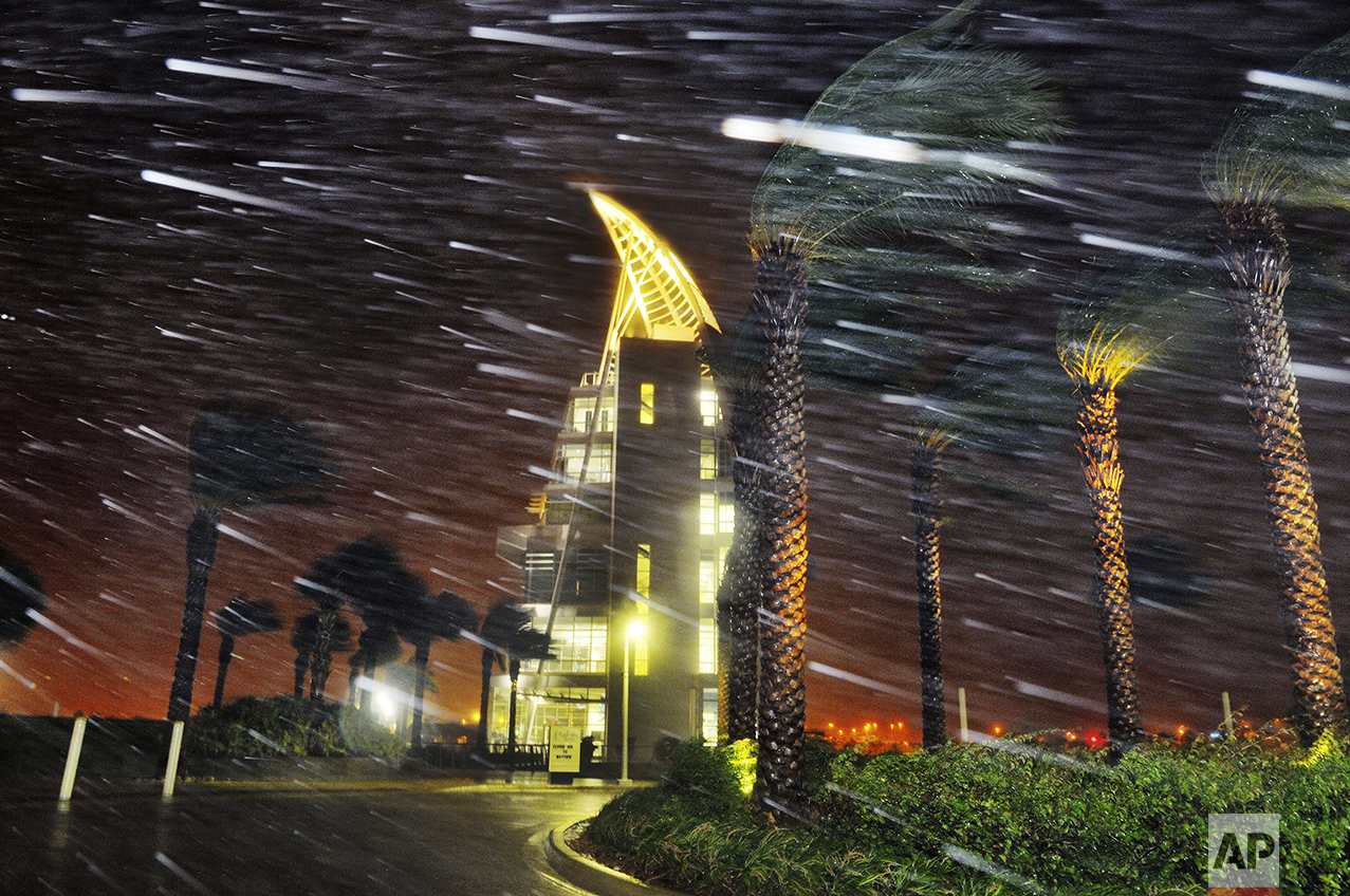 Trees sway from heavy rain and wind during Hurricane Matthew in front of Exploration Tower in Cape Canaveral, Fla., Oct. 7, 2016. (Craig Rubadoux/Florida Today via AP)