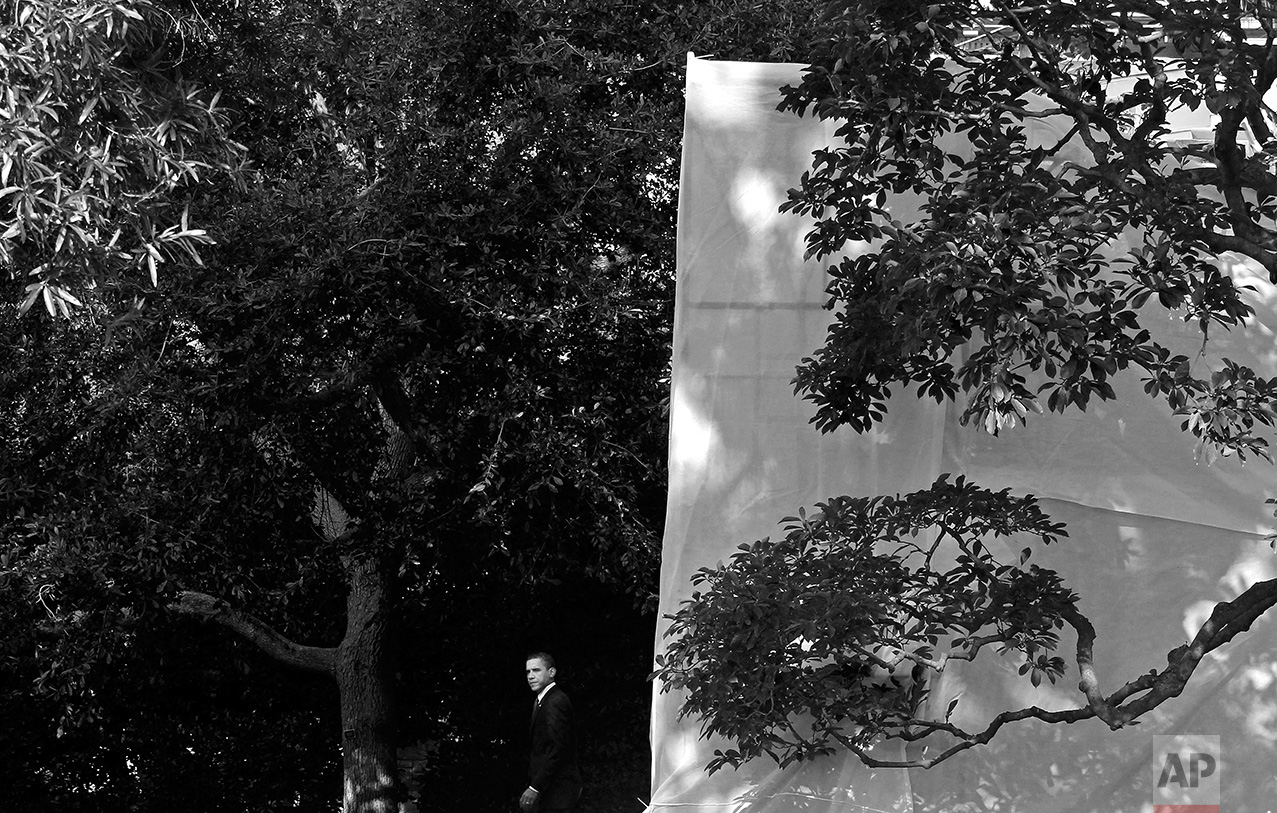 President Barack Obama walks from the Oval Office of the White House in Washington, Monday, Aug. 16, 2010, as the West Wing is covered in tarpaulin for a renovation project. (AP Photo/Charles Dharapak)