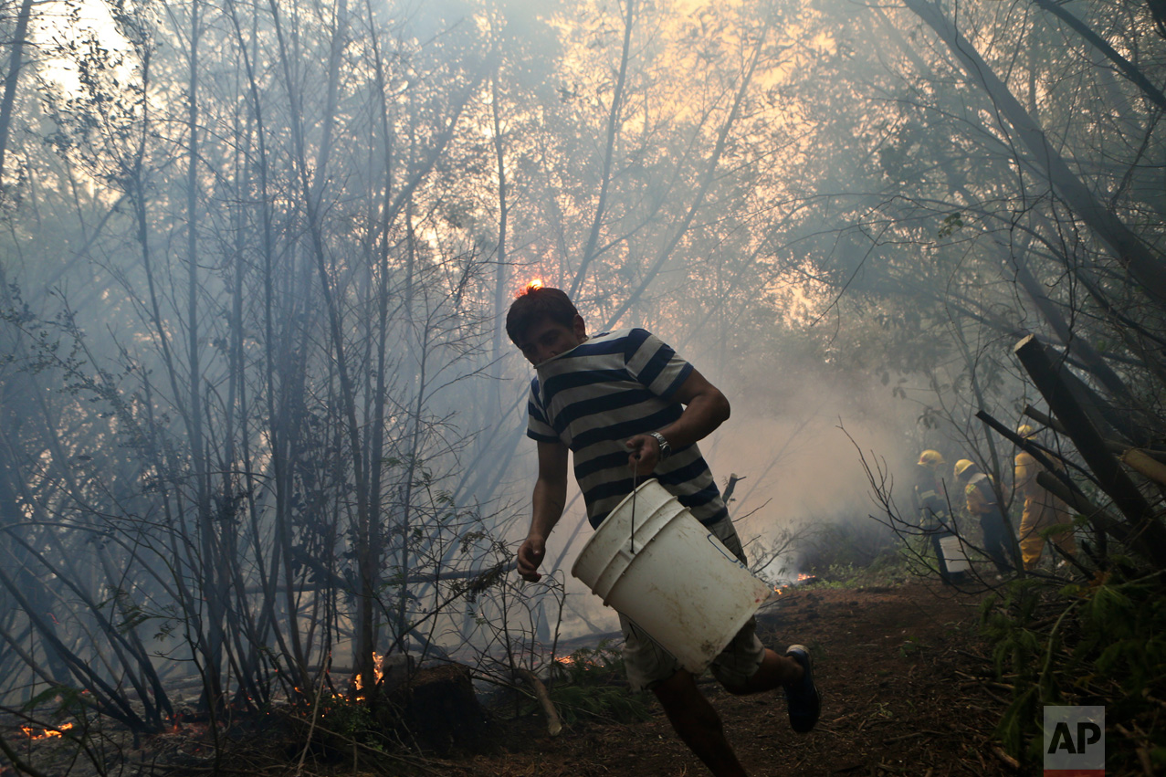 In this Saturday, Jan. 28, 2017 photo, a resident helping firefighters runs with an empty water bucket as they fight wildfires in Paso El Leon, in Concepcion, Chile. Residents of some communities have been battling the fires themselves, without any protective gear and often using just branches or bottles of water in a frantic effort to save their homes, pasture and livestock. (AP Photo/Esteban Felix)