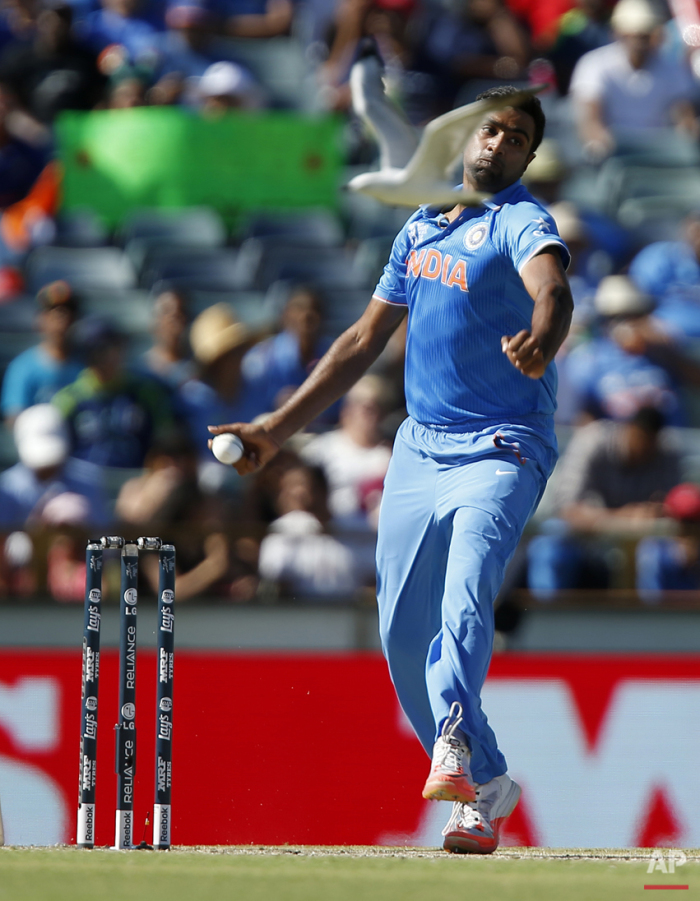 India's Ravichandran Ashwin bowls as a seagull flies past during their Cricket World Cup Pool B match against the West Indies in Perth, Australia, Friday, March 6, 2015. (AP Photo / Theron Kirkman)