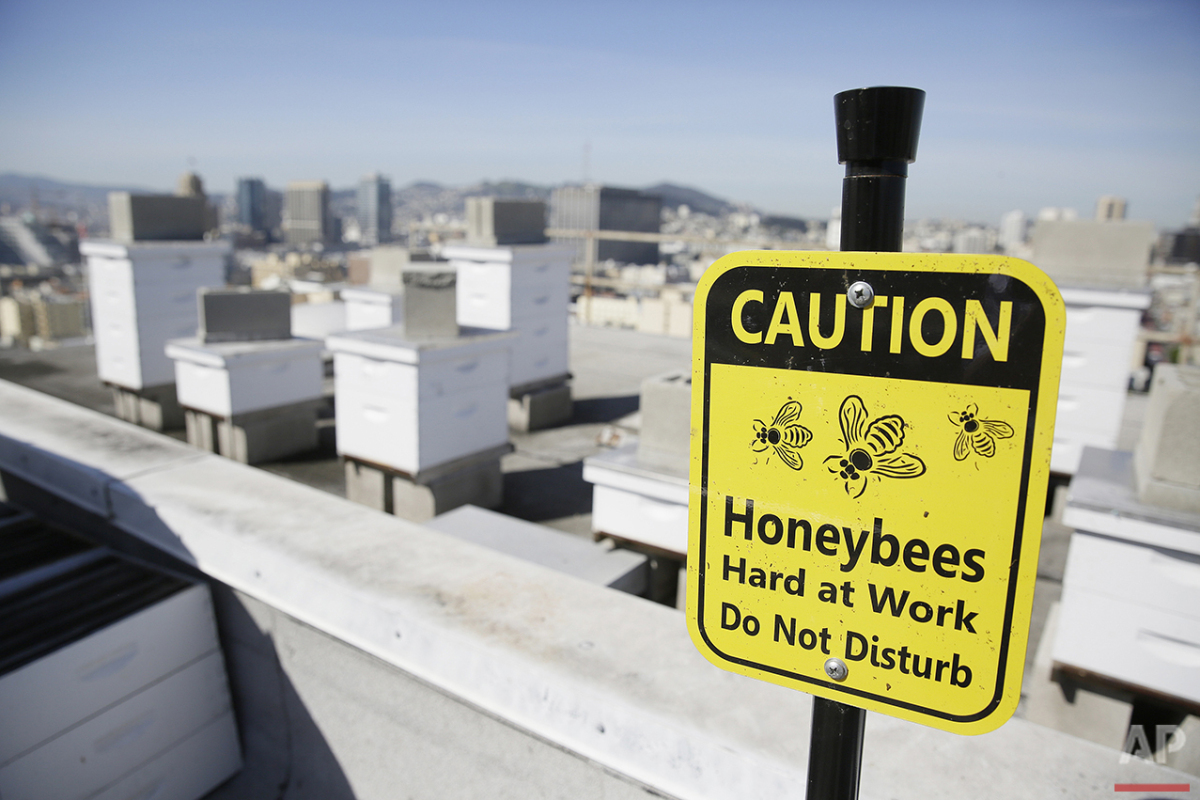 In this photo taken Monday, April 18, 2016, a caution sign is posted near beehives on top of the Clift Hotel in San Francisco. (AP Photo/Eric Risberg)