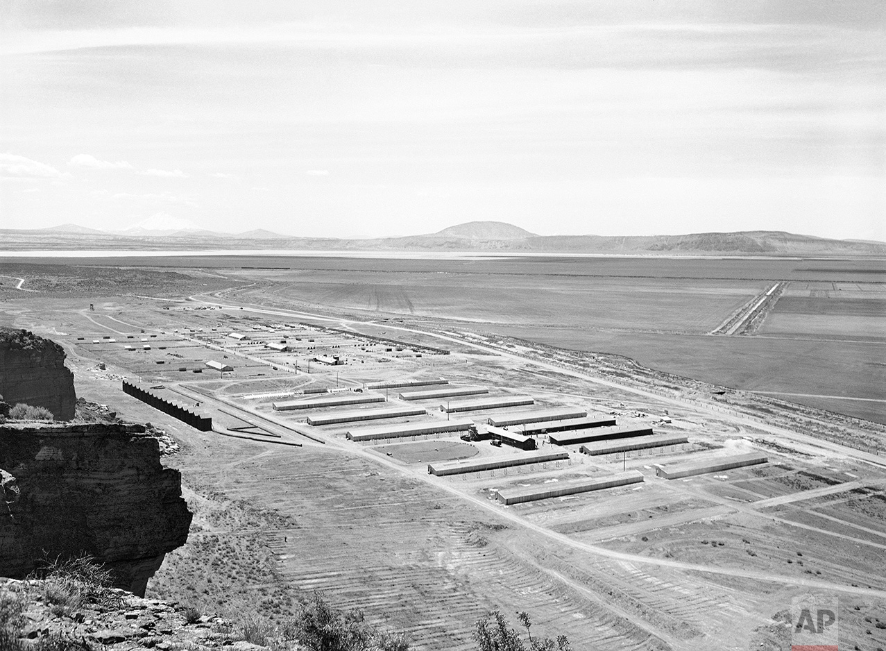 This May 23, 1943 photo shows a Japanese relocation camp in Tule Lake, Calif. Tule Lake is at left, under Mount Shasta. Roughly 120,000 Japanese immigrants and Japanese-Americans were sent to desolate camps that dotted the West because the government claimed they might plot against the U.S. Thousands were elderly, disabled, children or infants too young to know the meaning of treason. Two-thirds were citizens. (AP Photo)