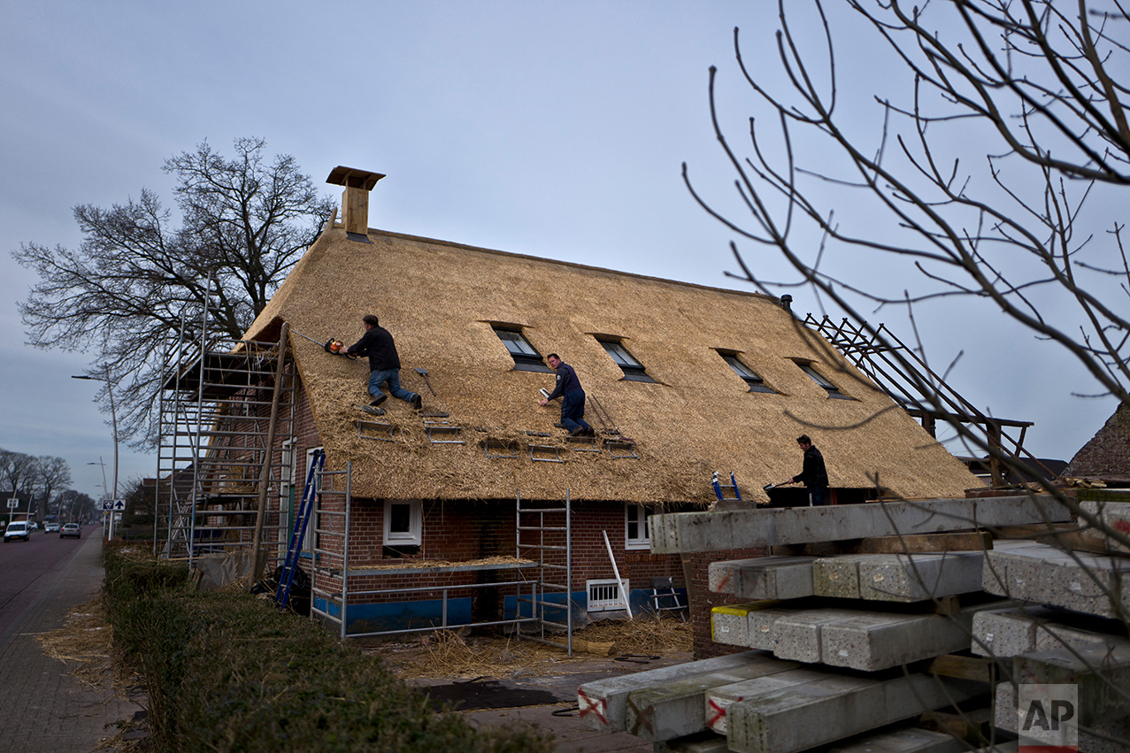 Dutch men work on the rooftop of a home in Staphorst, Netherlands, Wednesday, March 15, 2017. (AP Photo/Muhammed Muheisen)