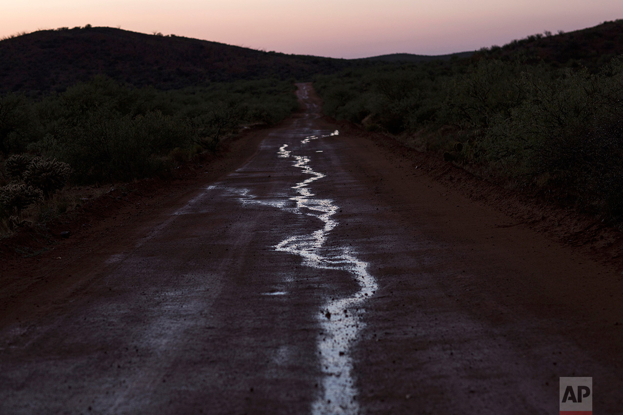 Puddles of water, caused by a rain storm, line a dirt road near the border with Arizona, on the outskirts of Sasabe, in the Mexican state Sonora, Saturday, April 1, 2017. (AP Photo/Rodrigo Abd)