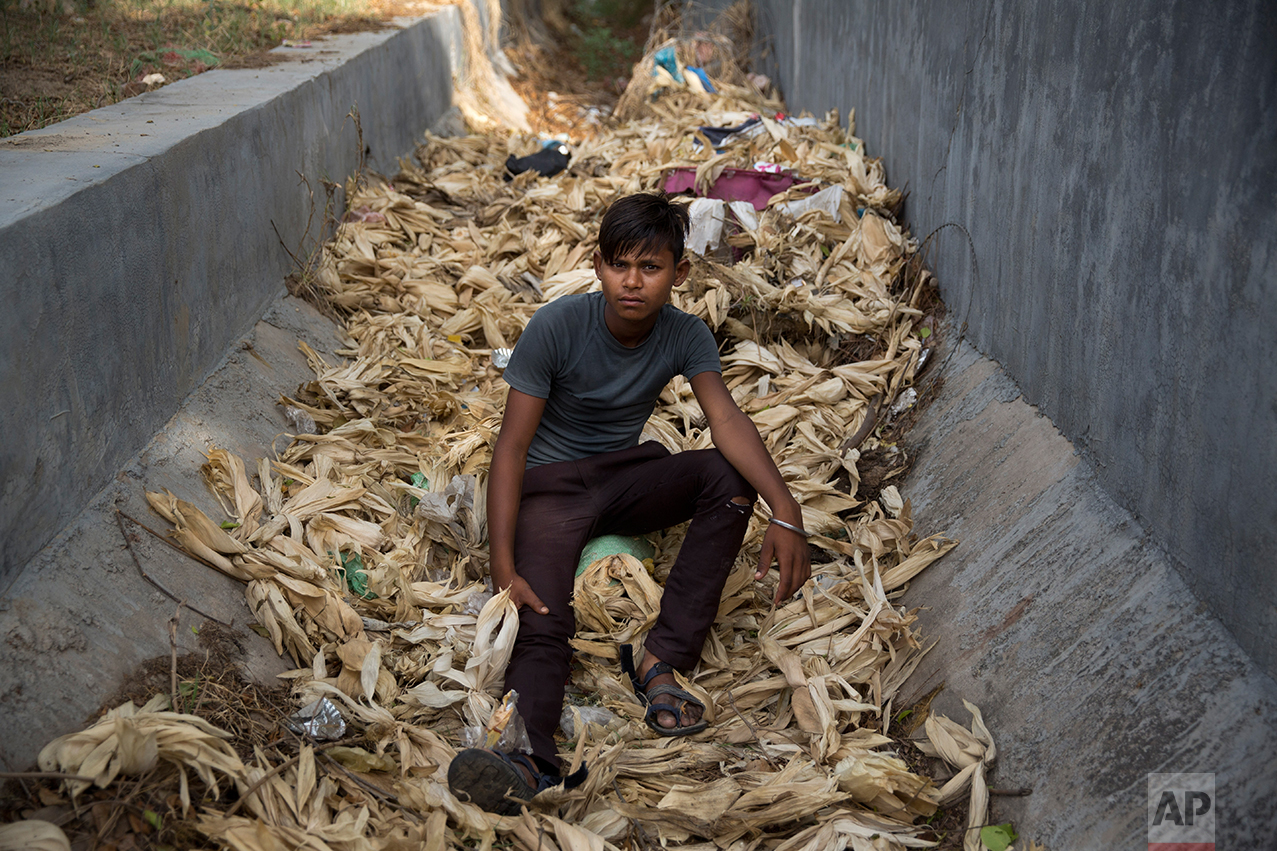 In this Thursday June 8, 2017 photo, Indian boy Brijesh, who claims to be 16 year old but doesn't know his birthday, poses for a photo as he sits on corn stalks next to a busy expressway in Noida, India. Every 100 meters (330 feet) or so there are children selling corn along this busy expressway on the outskirts of New Delhi. According to India's 2011 census, boys them him are part of the estimated 8.3 million child laborers In India. Uttar Pradesh state, where Noida is located, alone accounts for 1.8 million of that total. (AP Photo/Tsering Topgyal)