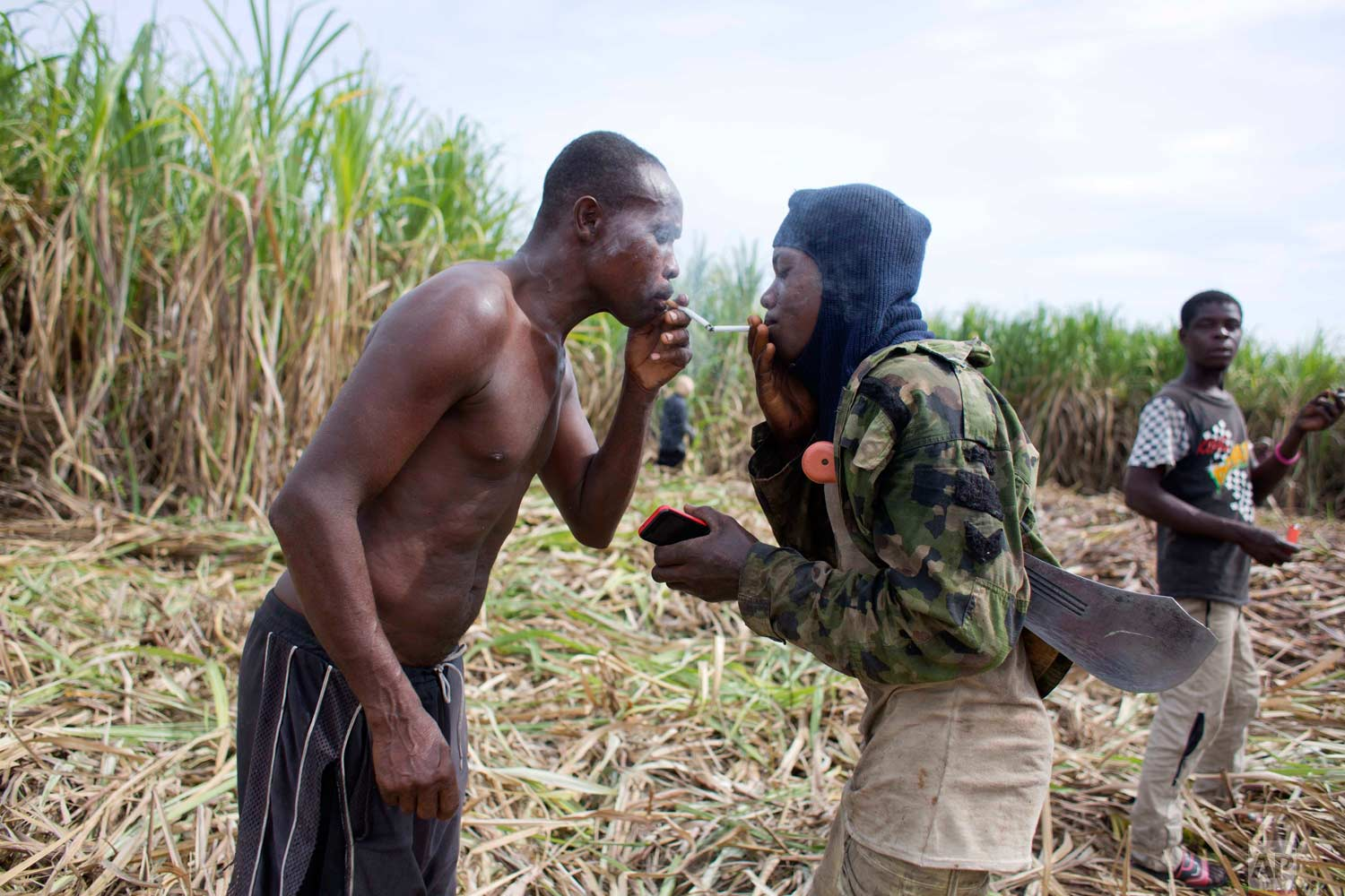 In this June 17, 2017 photo, Ronald Sincere, 20, right, lights his cigarette from that of Medez Cazeau, 42, as they take a break from cutting sugar cane on the Aubry farm in a rural area of Leogane, Haiti. The men migrated from Petit Goave to work year-round on this farm, about 45 minutes away by car, earning 800 gourdes, or about $12.50 dollars for each truck they fill with cane. The men said they manage to fill one truck in two days, which is used to make clairin, a sugar-based alcoholic drink. (AP Photo/Dieu Nalio Chery)