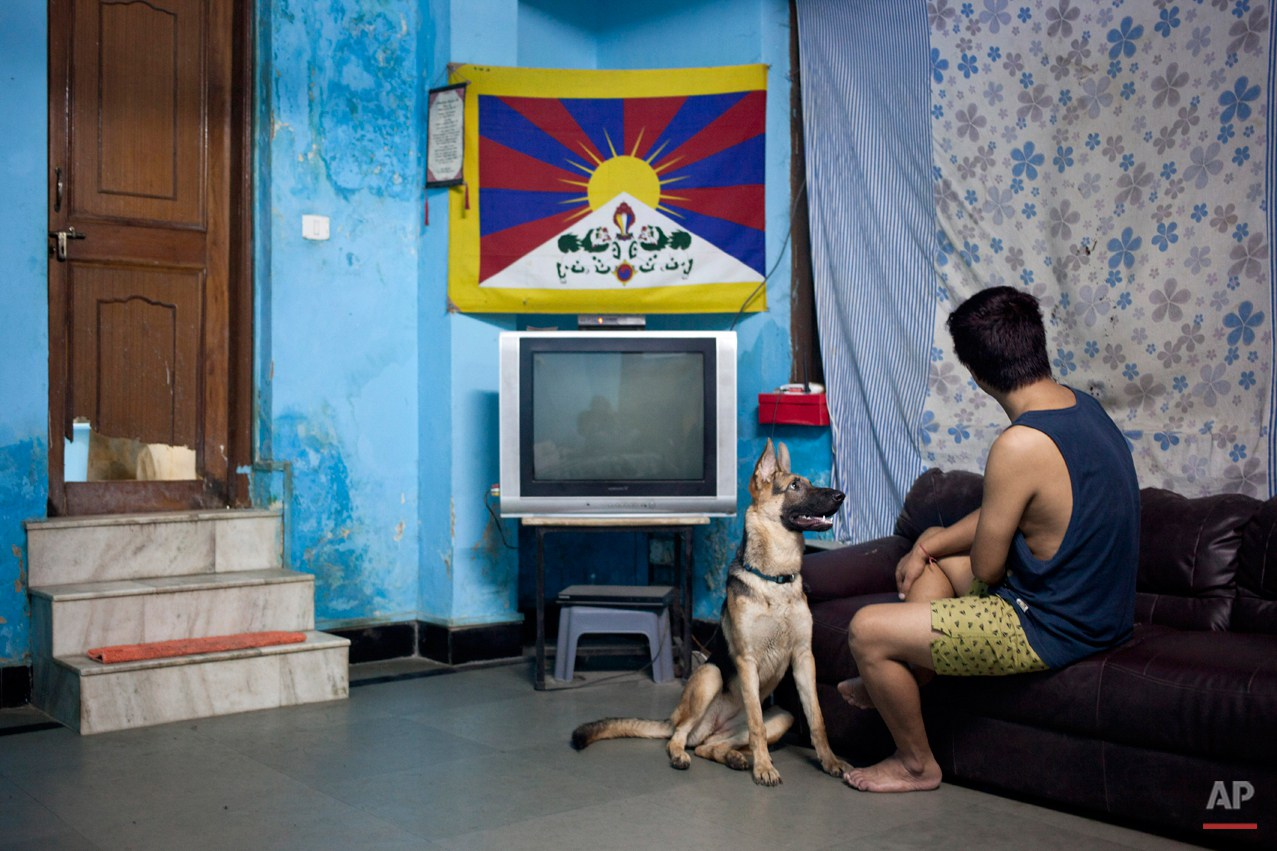 "In this Wednesday, Oct. 15, 2014 photo, Tibetan exile Tsering, only one name given, sits with his pet dog in his room in New Delhi, India. Tsering escaped to India in 1997 when he was around 6 years old. Tsering says his mother cries when they speak on the phone and it makes his heart feels empty for several days.  She still tells him not to go swimming or go trekking alone. ìFor my mother I am still that six year old boy she sent away,"" he said. (AP Photo/Tsering Topgyal)"