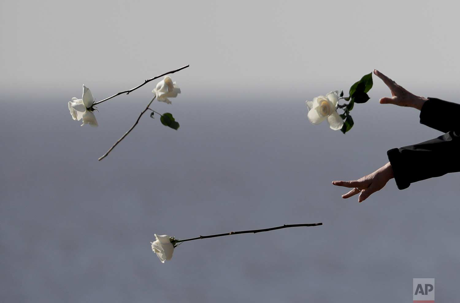Chile's President Michelle Bachelet, bottom, and others cast flowers into the Rio de la Plata during a visit to Memory Park which honors the victims of the country's dictatorship, in Buenos Aires, Argentina, on Thursday, July 20, 2017. (AP Photo/Natacha Pisarenko)