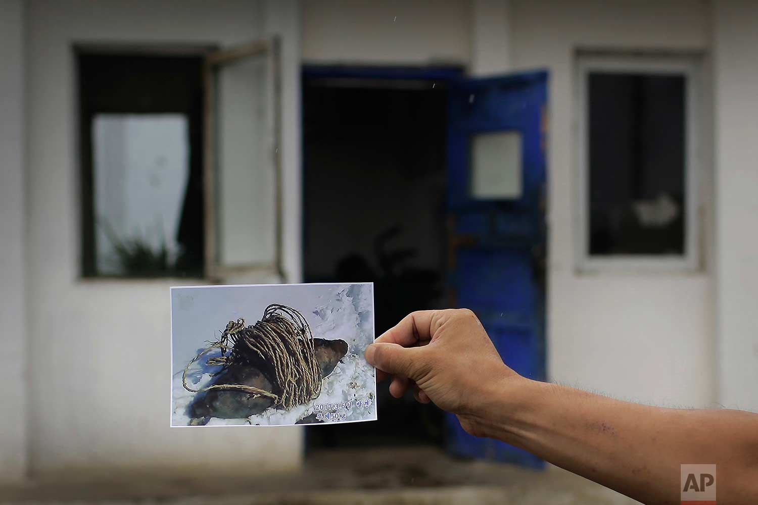 In this Friday, July 21, 2017, photo, Maj. Jong Il Hyon, 44, a member of a bomb squad for South Hamgyong, holds up a photograph in Hamju county, North Korea, of an unexploded bomb found near the railway which runs through Hamhung from Pyongyang to the northeastern port of Chongjin. (AP Photo/Wong Maye-E)