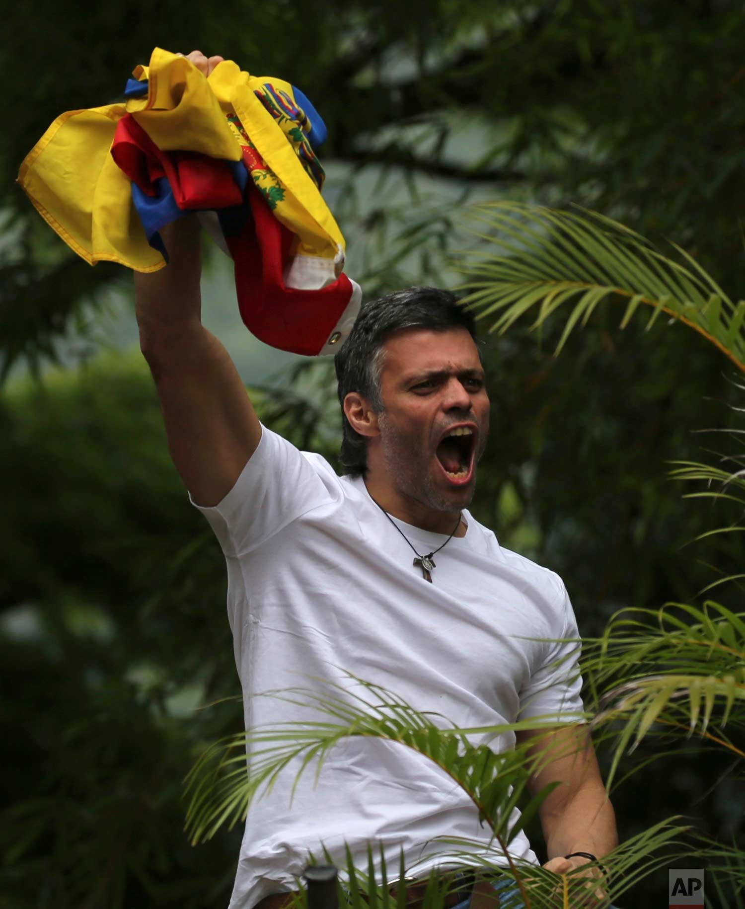 Opposition leader Leopoldo Lopez holds up a Venezuelan national flag as he greets supporters outside his home in Caracas, Venezuela, July 8, 2017 photo. (AP Photo/Fernando Llano)