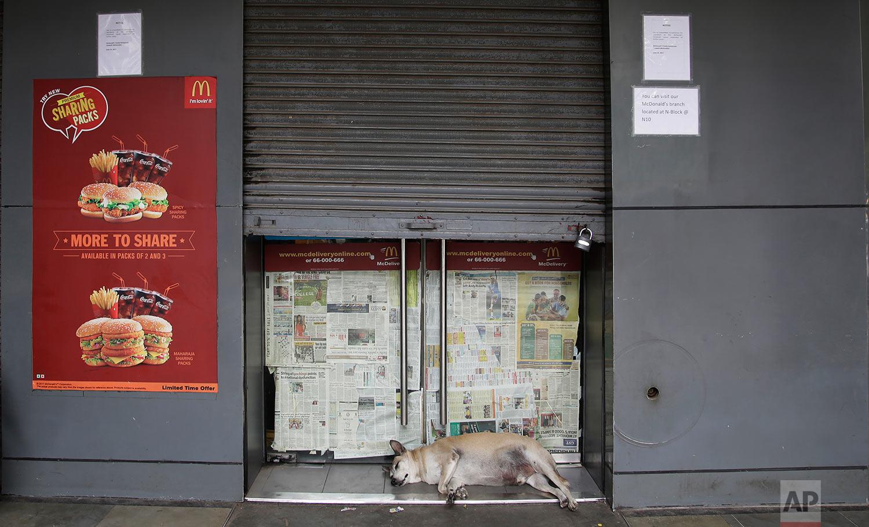 India McDonald's