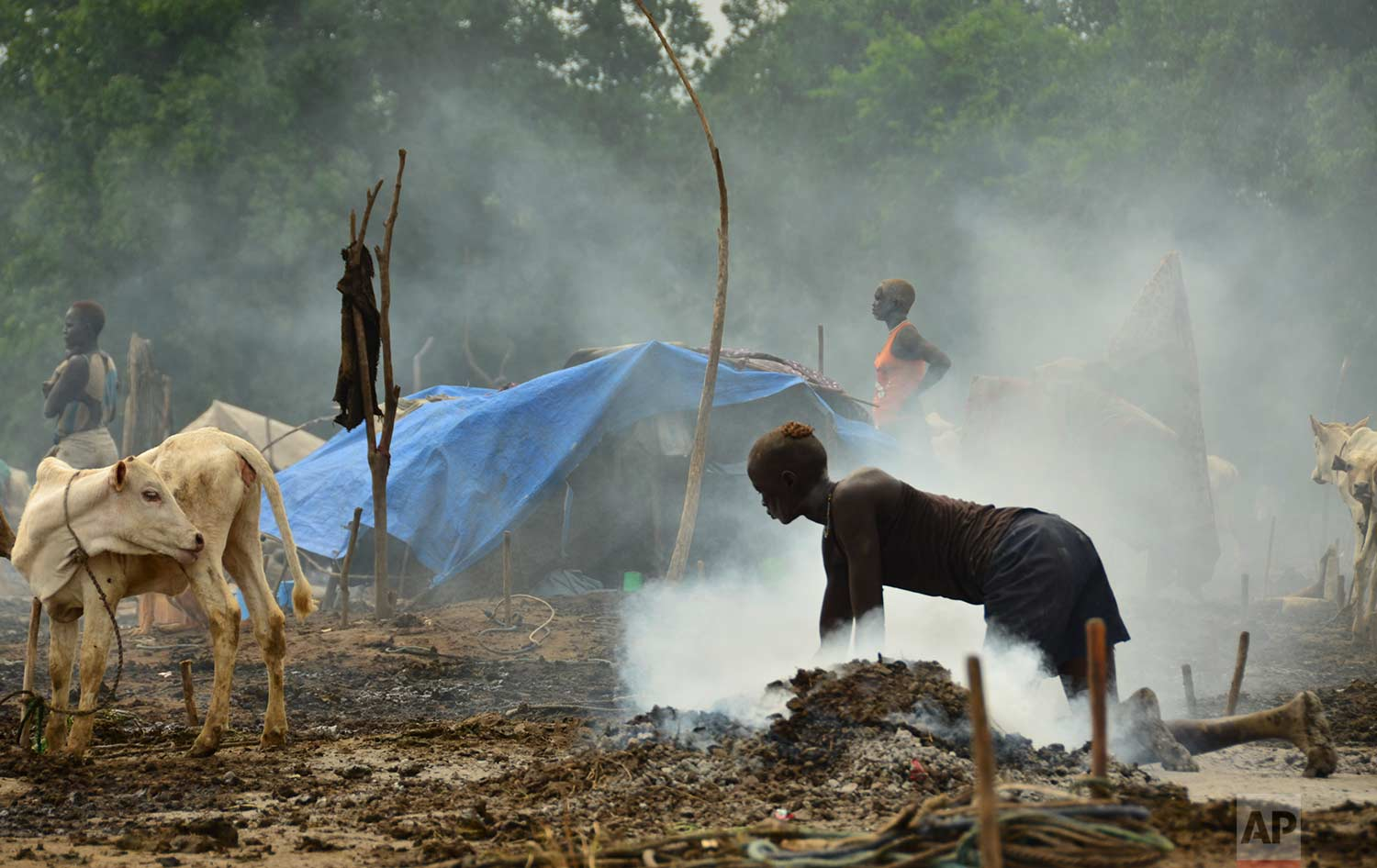 In this photo taken Monday, July 31, 2017, a young South Sudanese woman scrubs the dung-covered ground in preparation for cows to return from grazing, at a cattle camp outside the town of Rumbek, South Sudan. (AP Photo/Mariah Quesada)