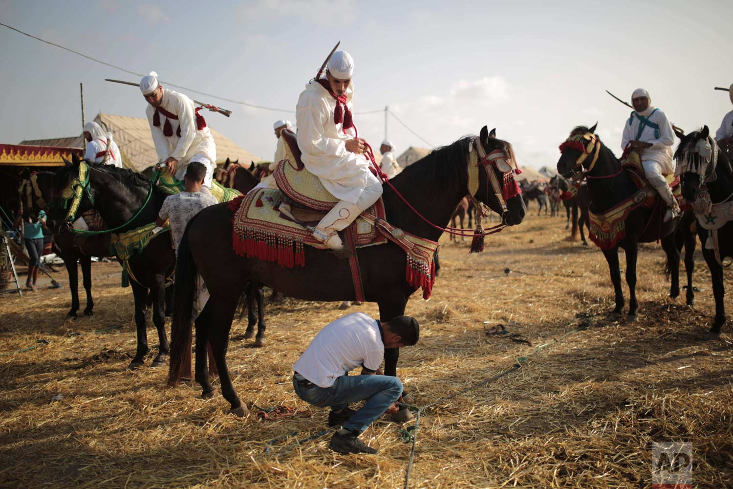 In this Thursday, Aug. 17, 2017 photo, horsemen prepare their horses before taking part in Tabourida, a traditional horse riding show also known as Fantasia, in Mansouria, near Casablanca, Morocco. (AP Photo/Mosa'ab Elshamy)