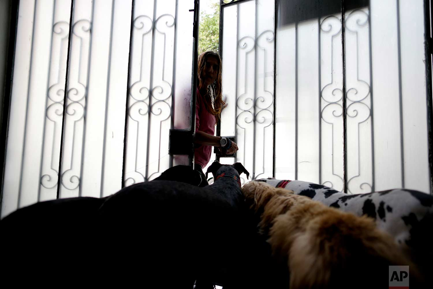 Mariam Luzan is greeted by four of her dogs at the entrance of their temporary home in the aftermath of a 7.1-magnitude earthquake, in Mexico City, Friday, Sept. 22, 2017. Luzan and her husband were obligated to abandon their animal rescue home with their 50 dogs and pet pig after  rescuers told them that they had a gas leak and needed to leave immediately. (AP Photo/Natacha Pisarenko)