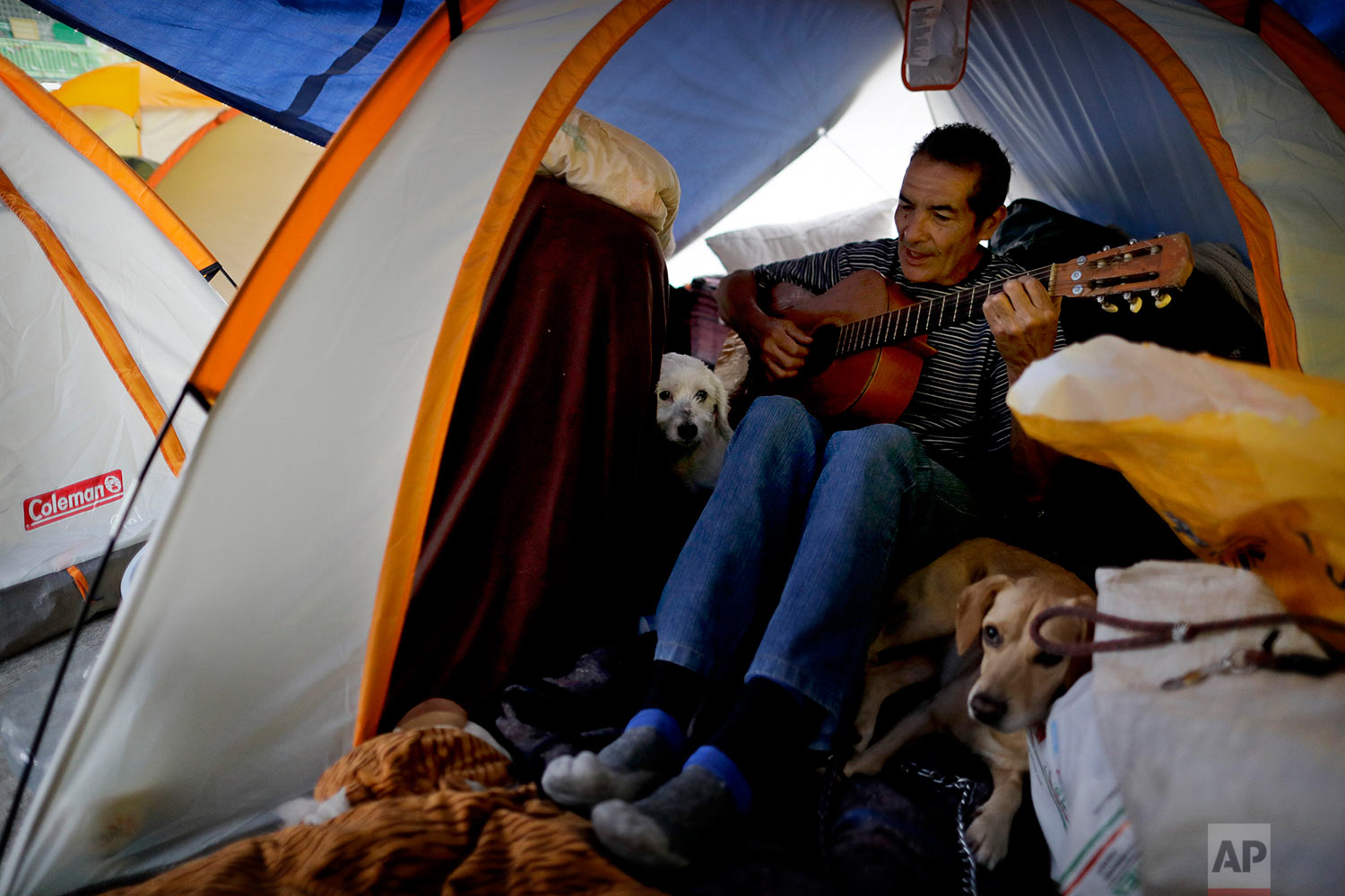 Eduardo Alvarez plays his guitar inside a tent with his pet dogs Lucas and Peluche at the Francisco Kino school, which was turned into a temporary shelter for residents evacuated from the large apartment complex in the Tlalpan neighborhood of Mexico City, Monday, Sept. 25, 2017.  (AP Photo/Natacha Pisarenko)