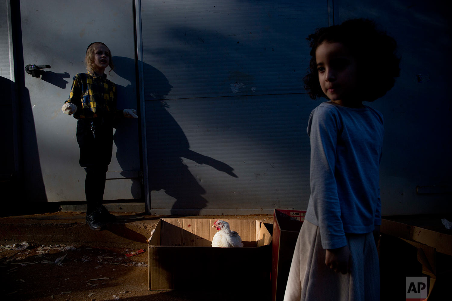 An ultra-Orthodox Jewish youth stands next to his chicken during the Kaparot ritual in Bnei Brak, Israel, Thursday, Sept. 28, 2017. (AP Photo/Oded Balilty)